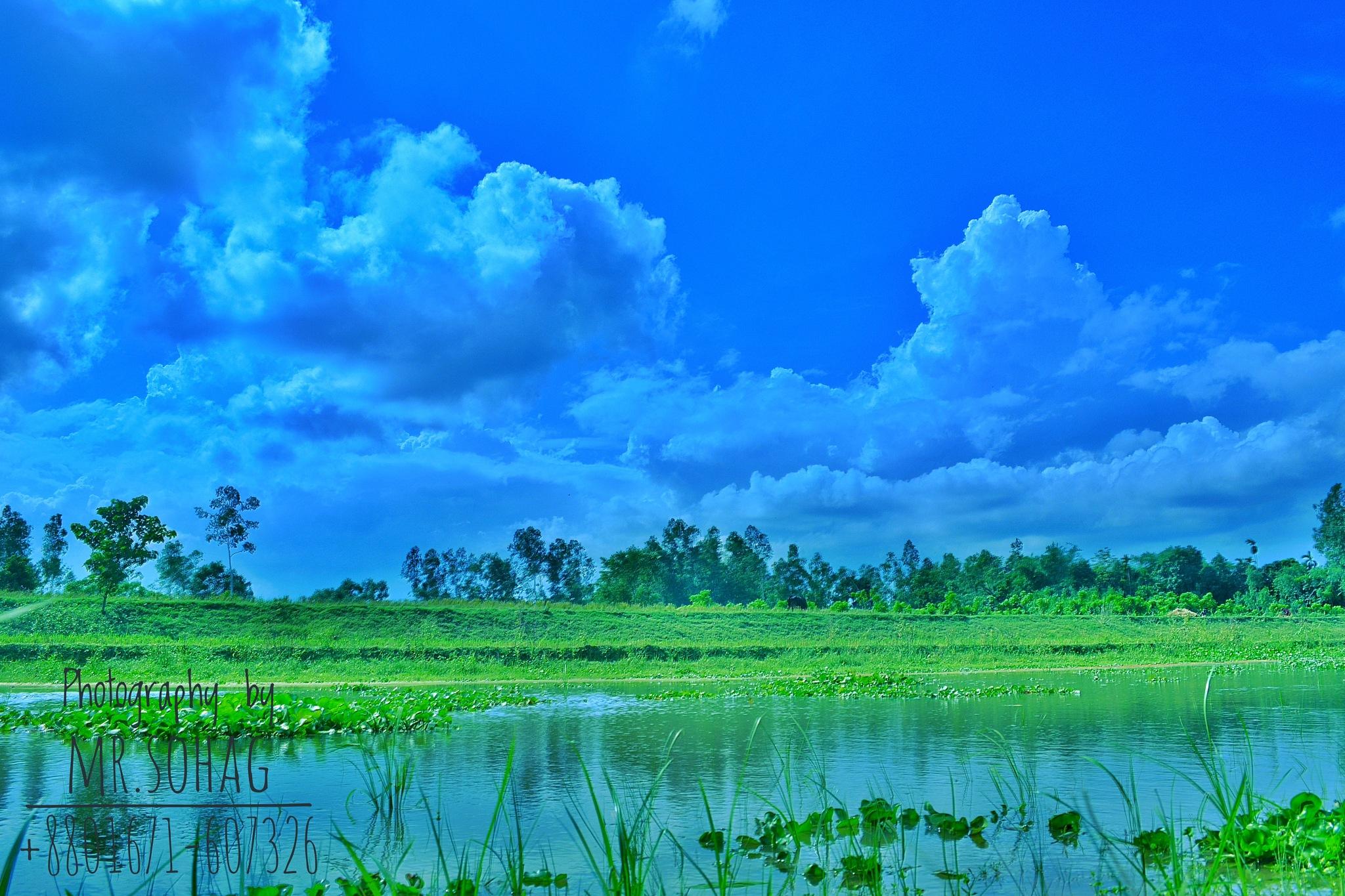 landscape  by Moshiur Rahman Sohag