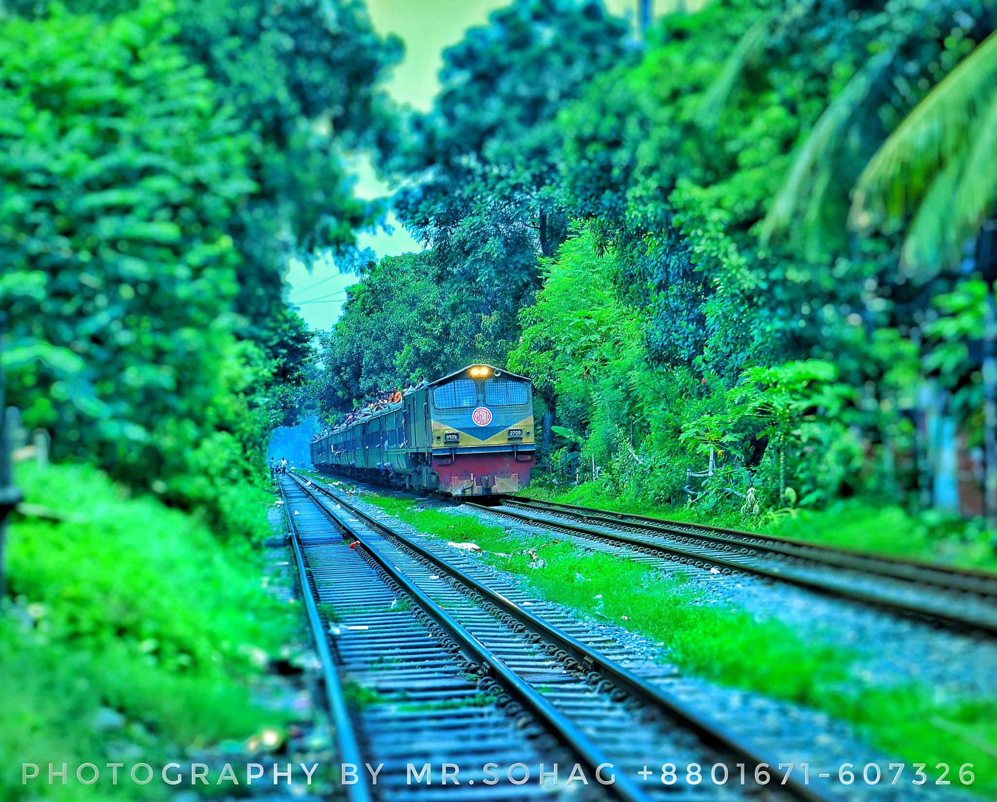 Lonely Road by Moshiur Rahman Sohag