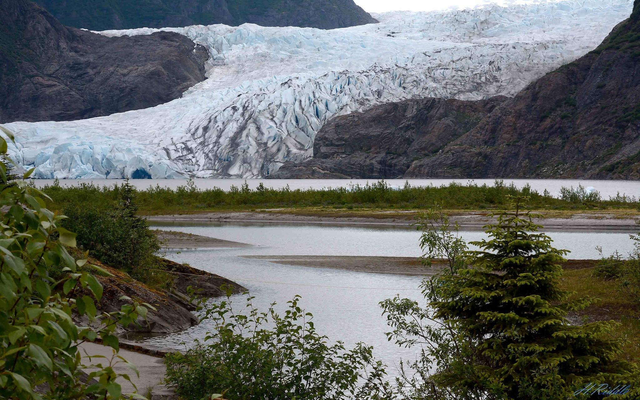 Mendenhall Glacier, Alaska by Herb Riddle