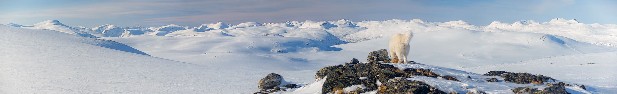 Norwegian mountain panorama by geirole