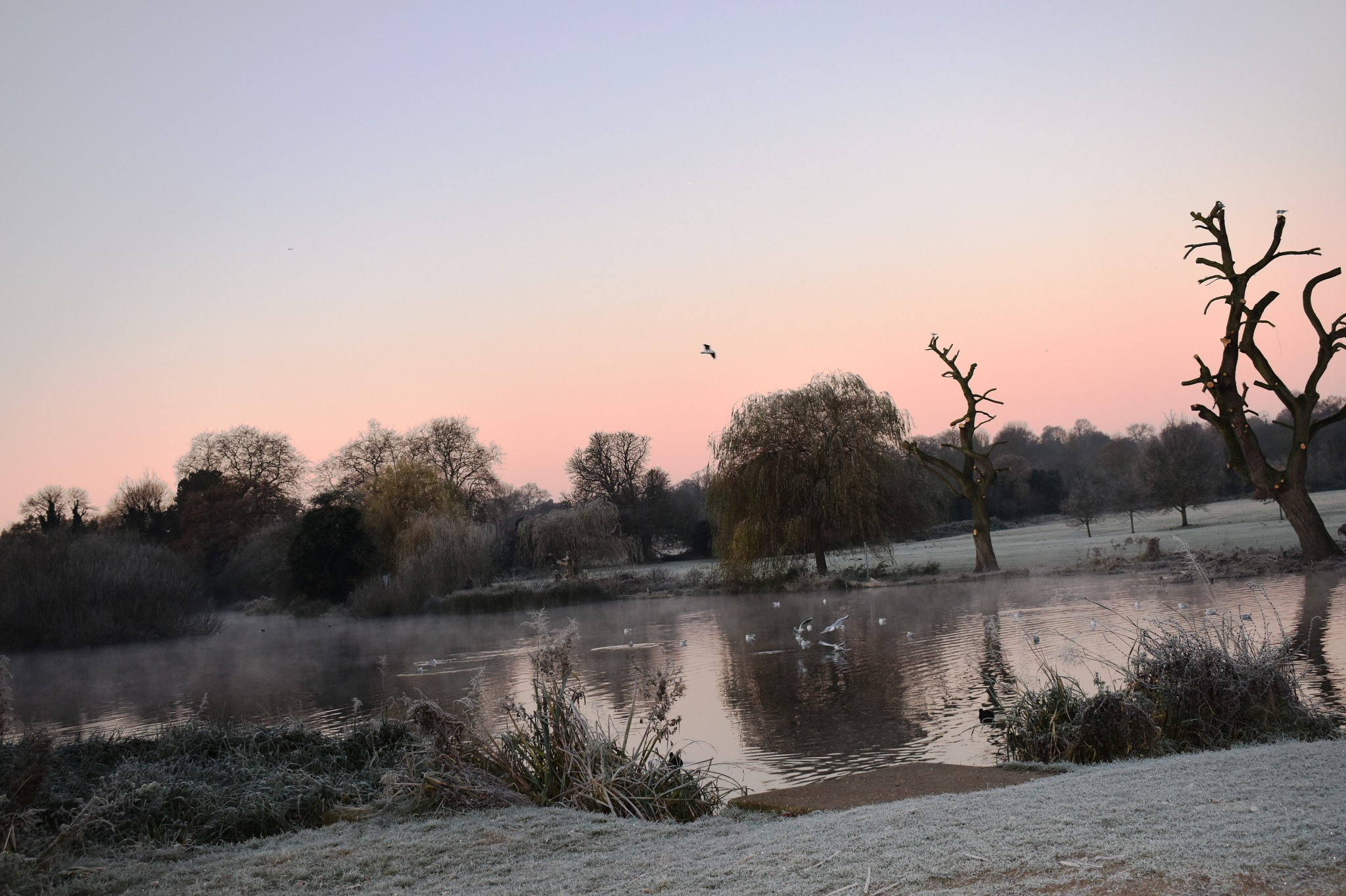 A chilly start to the day by Stephen Ashdown