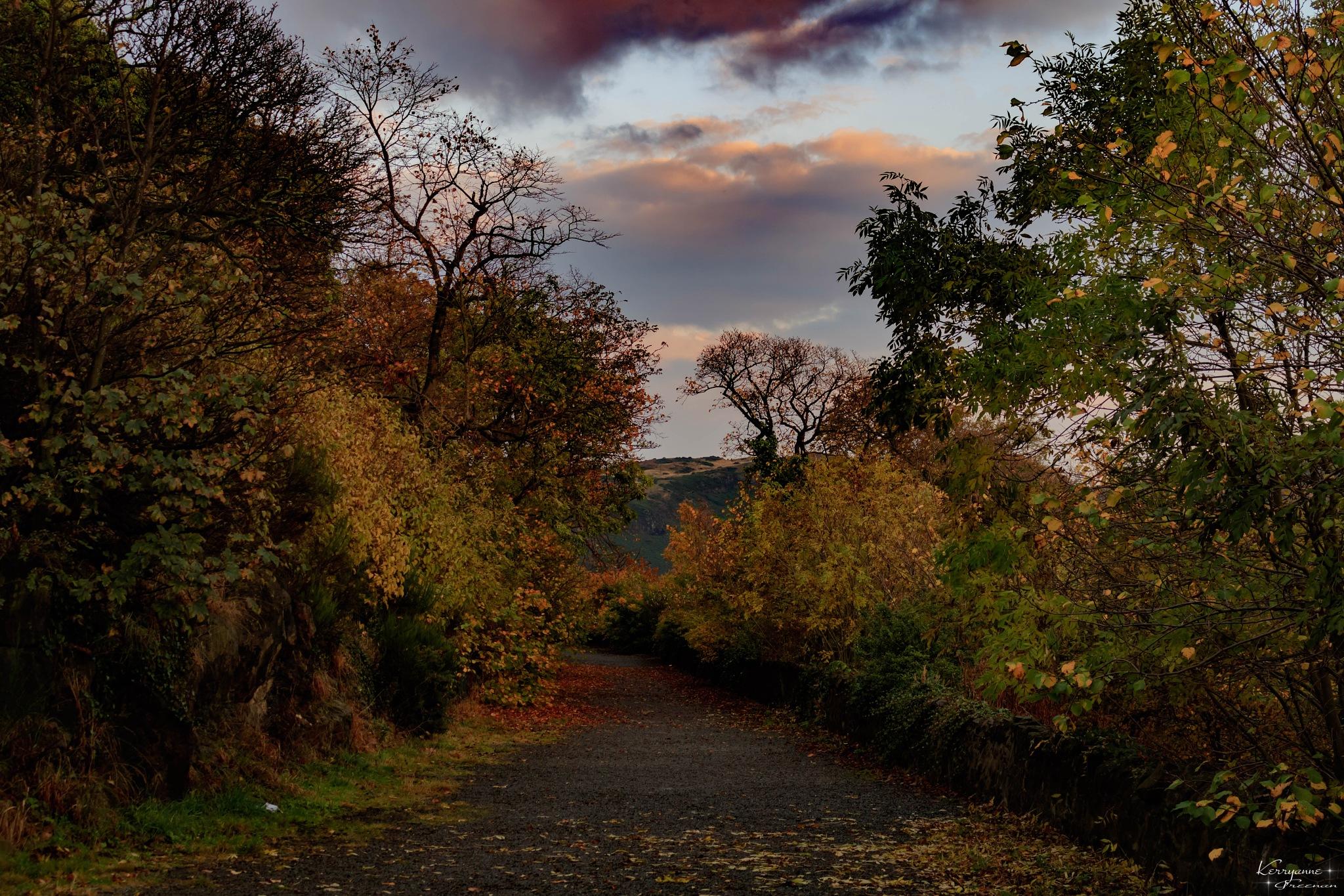 Calton Hill Path Edinburgh  by kerryspics