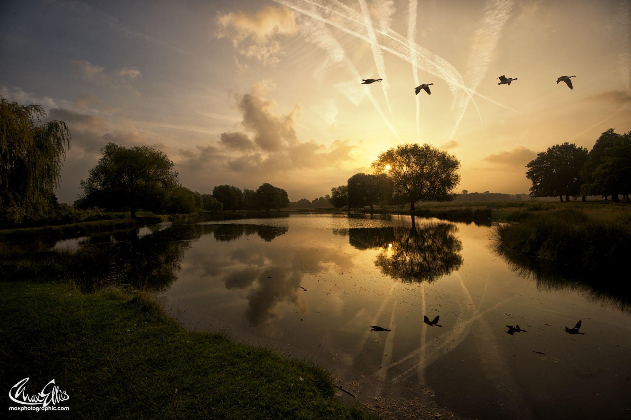 Mid September Dawn by Max Ellis