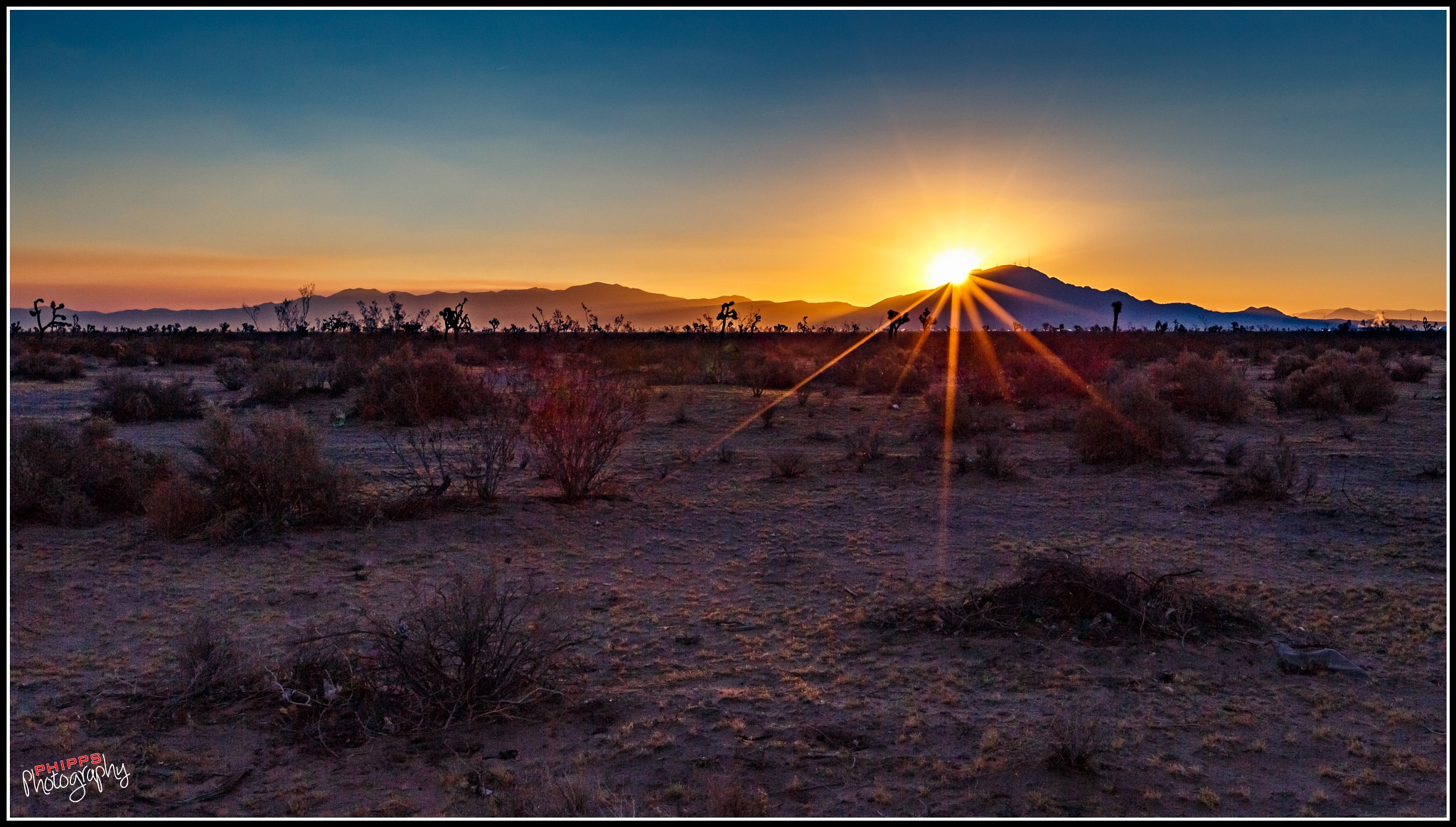 Mojave Sunrise... by PhippsPhotography