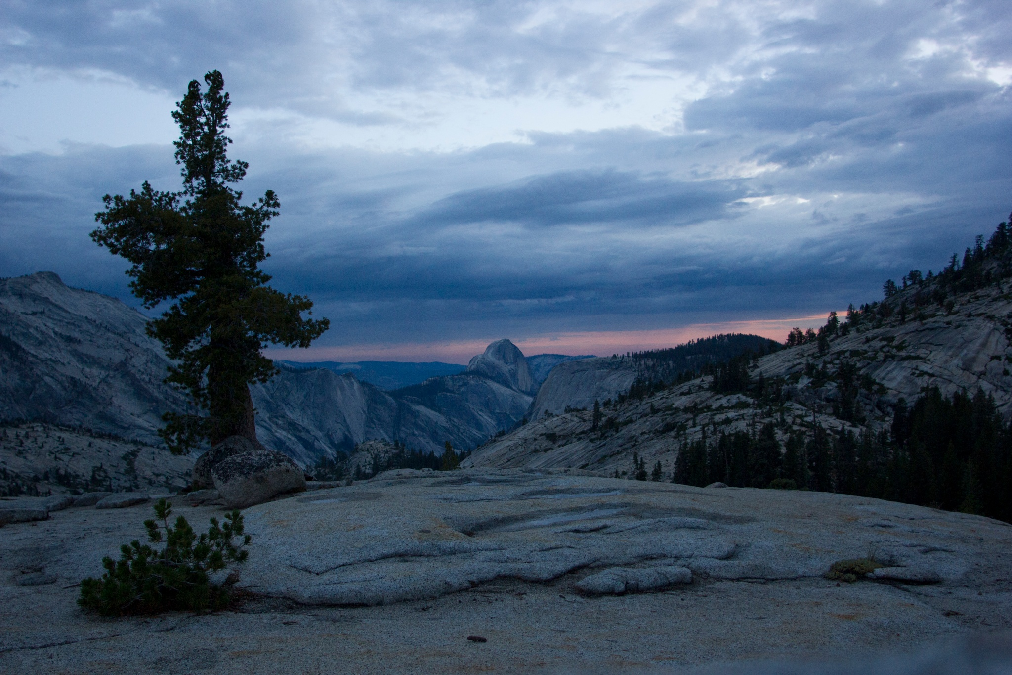 Half Dome at Sunset by Amanda George