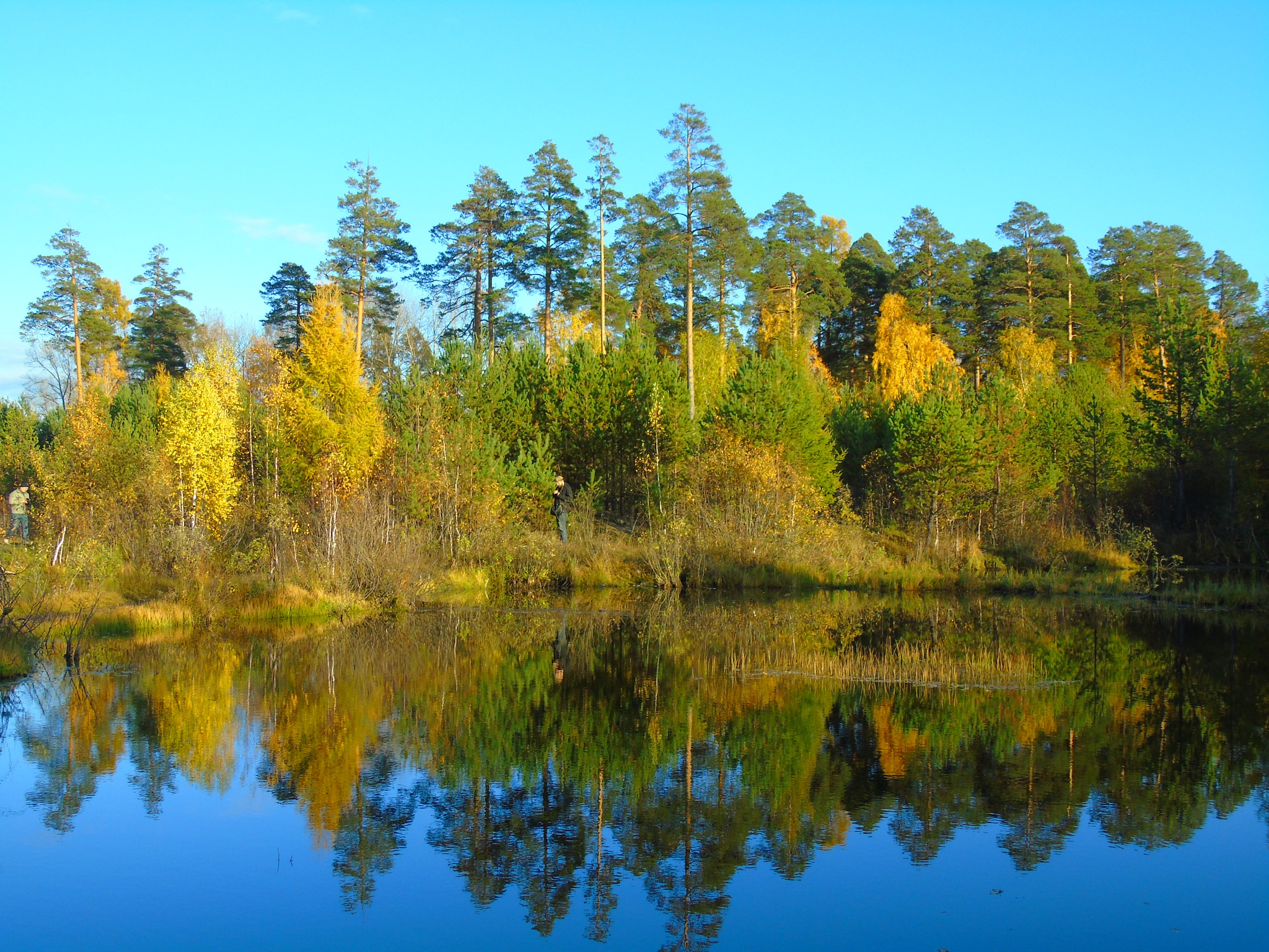 autumn lake by Veronika  Parfenyuk