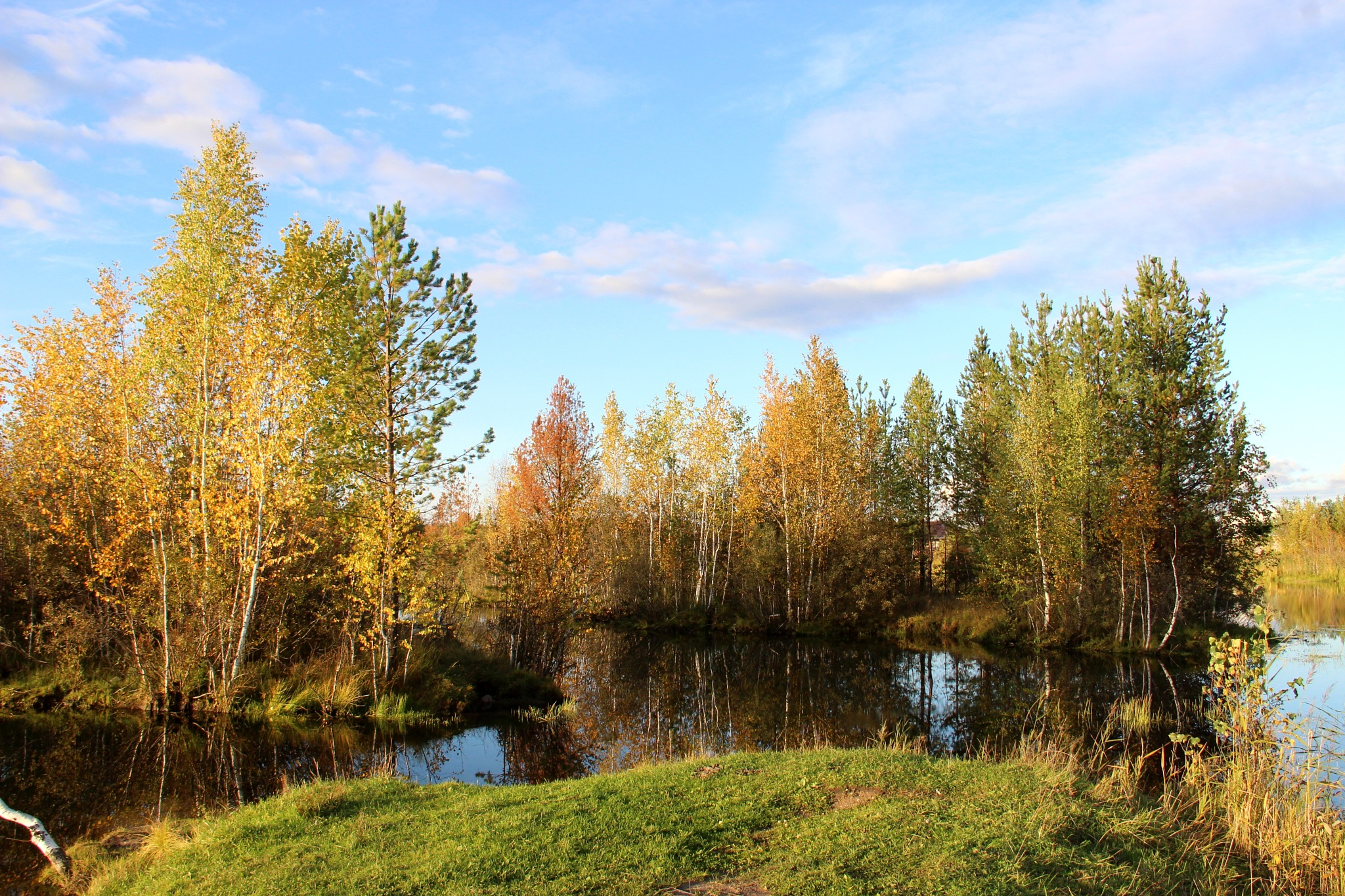autumn by Veronika  Parfenyuk