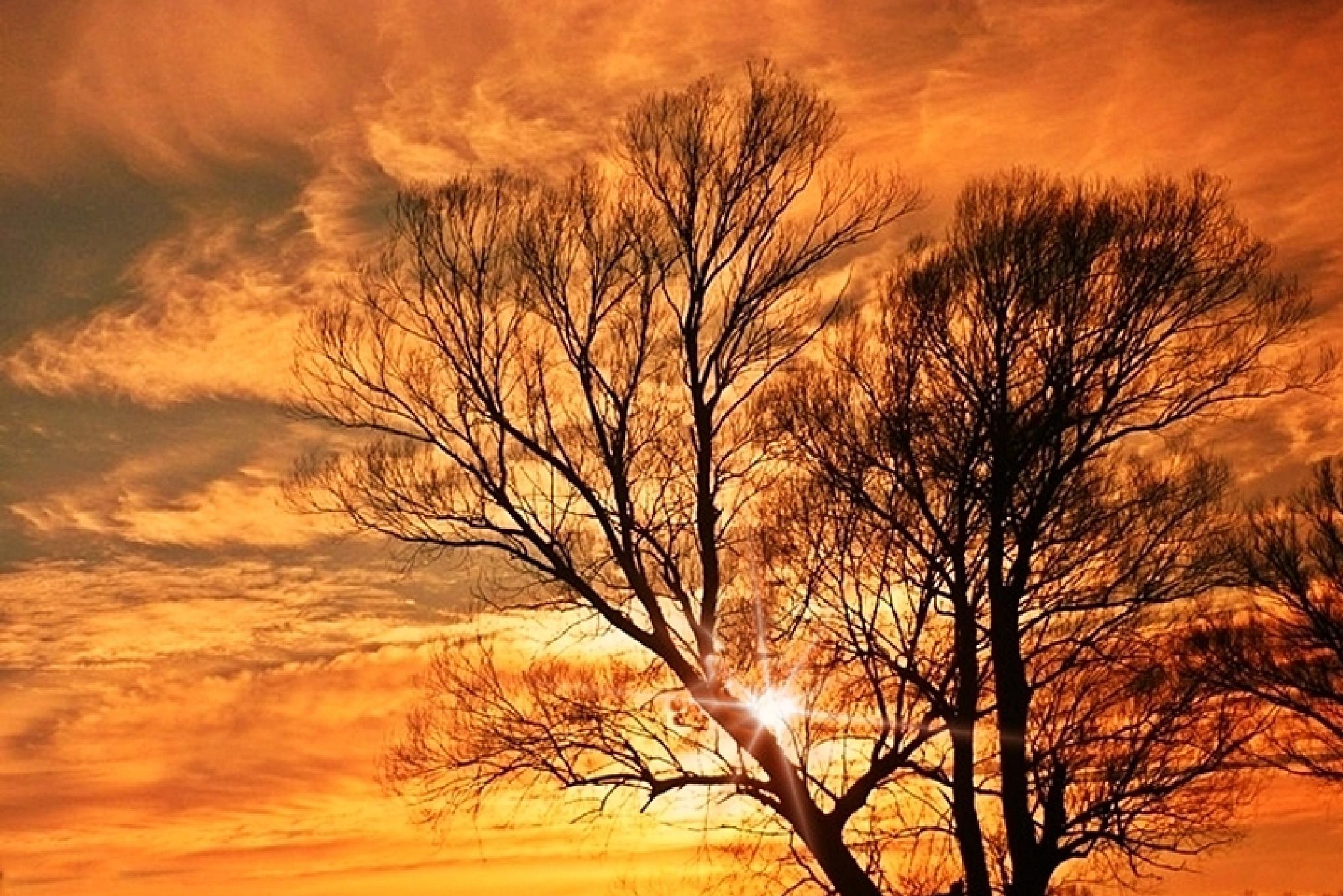 Winter sunset by Gabriella