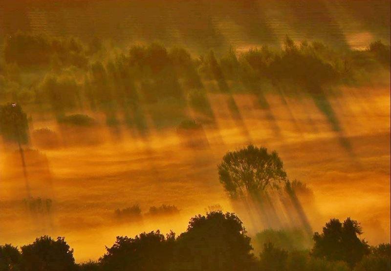 Lights dawn by Gabriella #