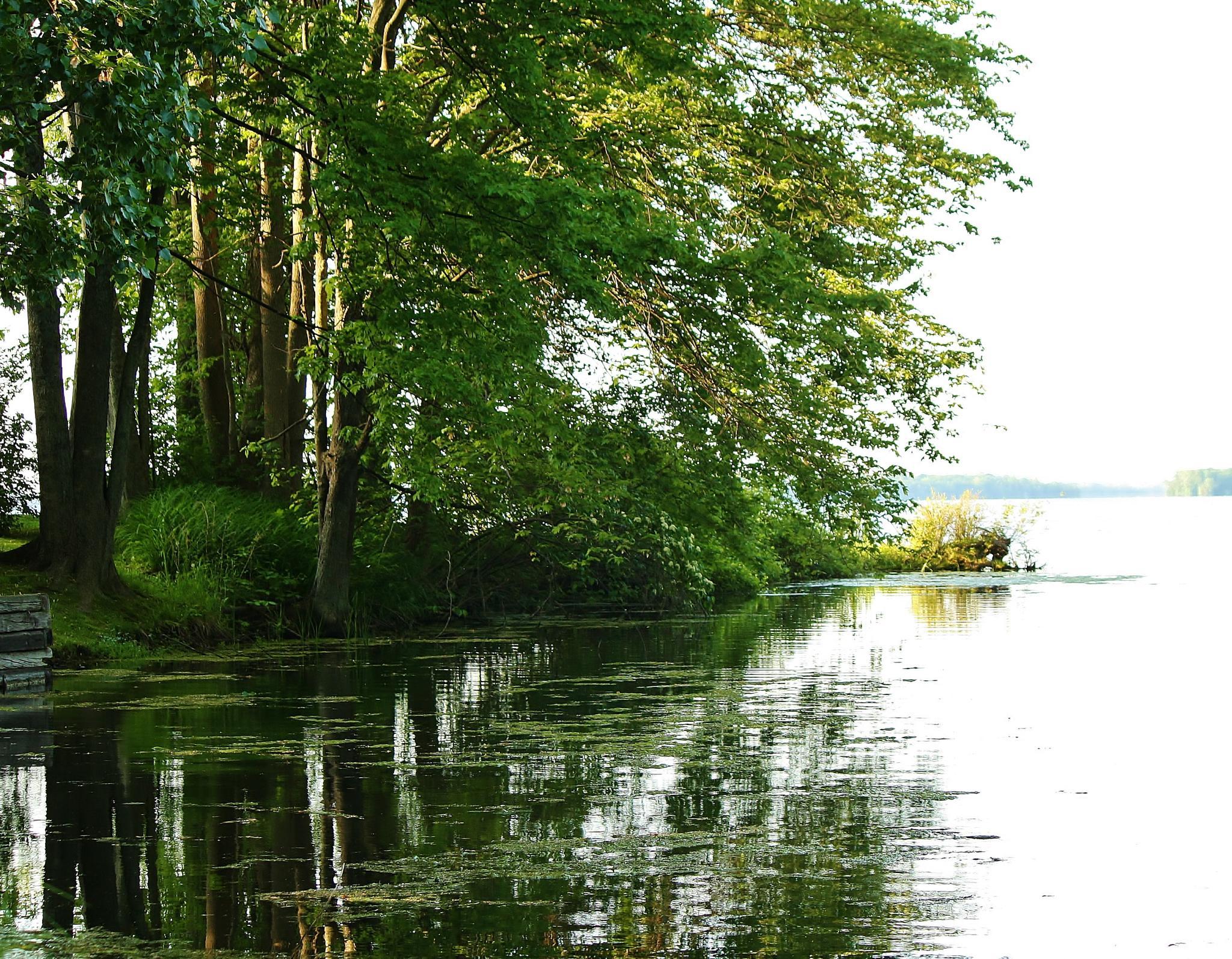 Gentle Waters by Allan Fritz