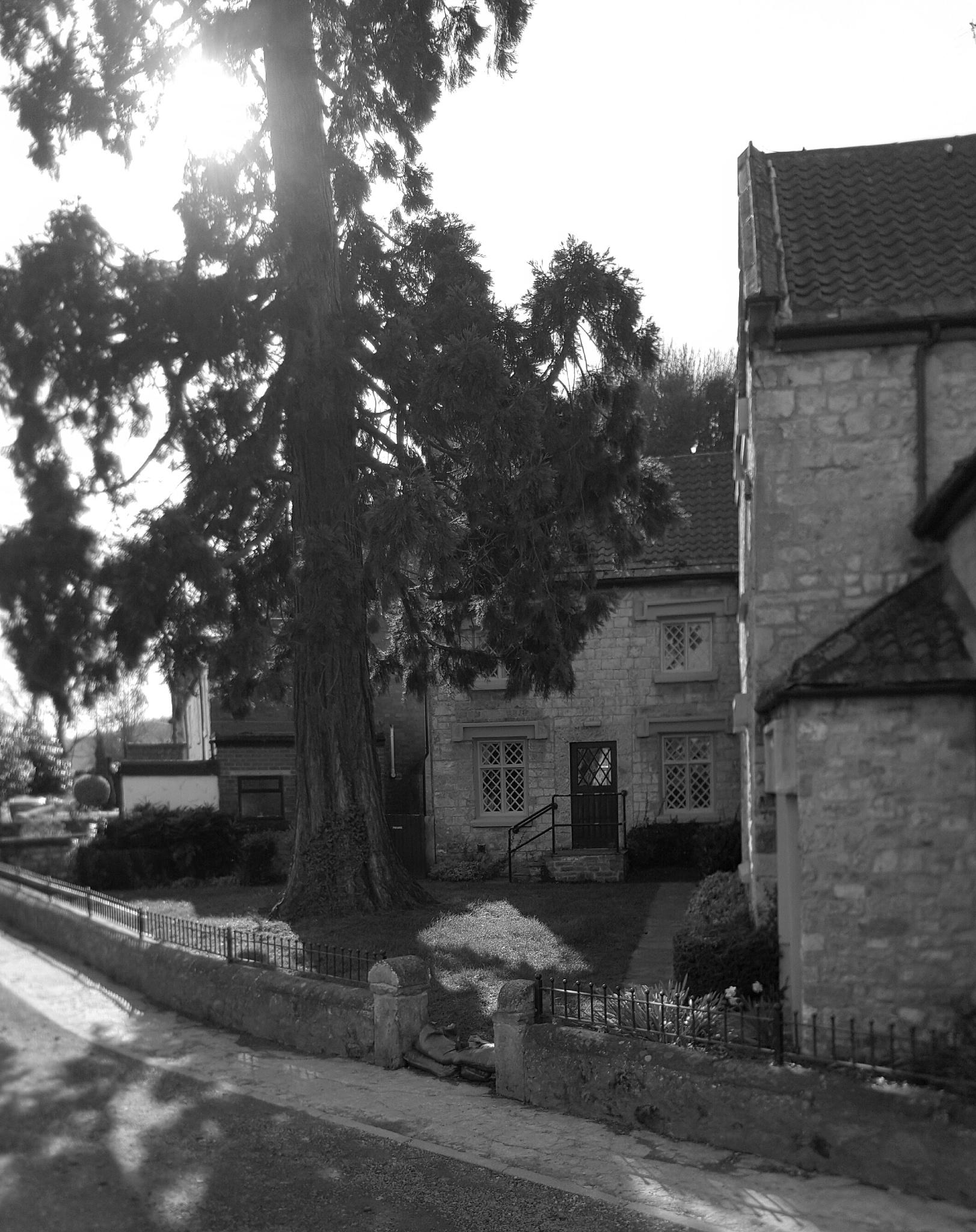 Yorkshire Cottage  by icepoppy