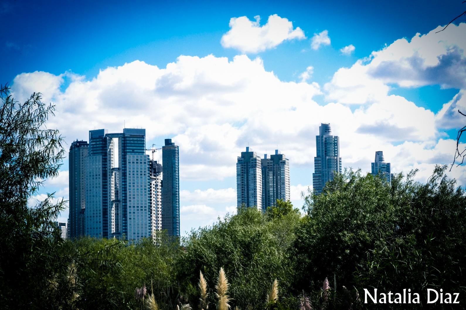 City  by Natalia Diaz