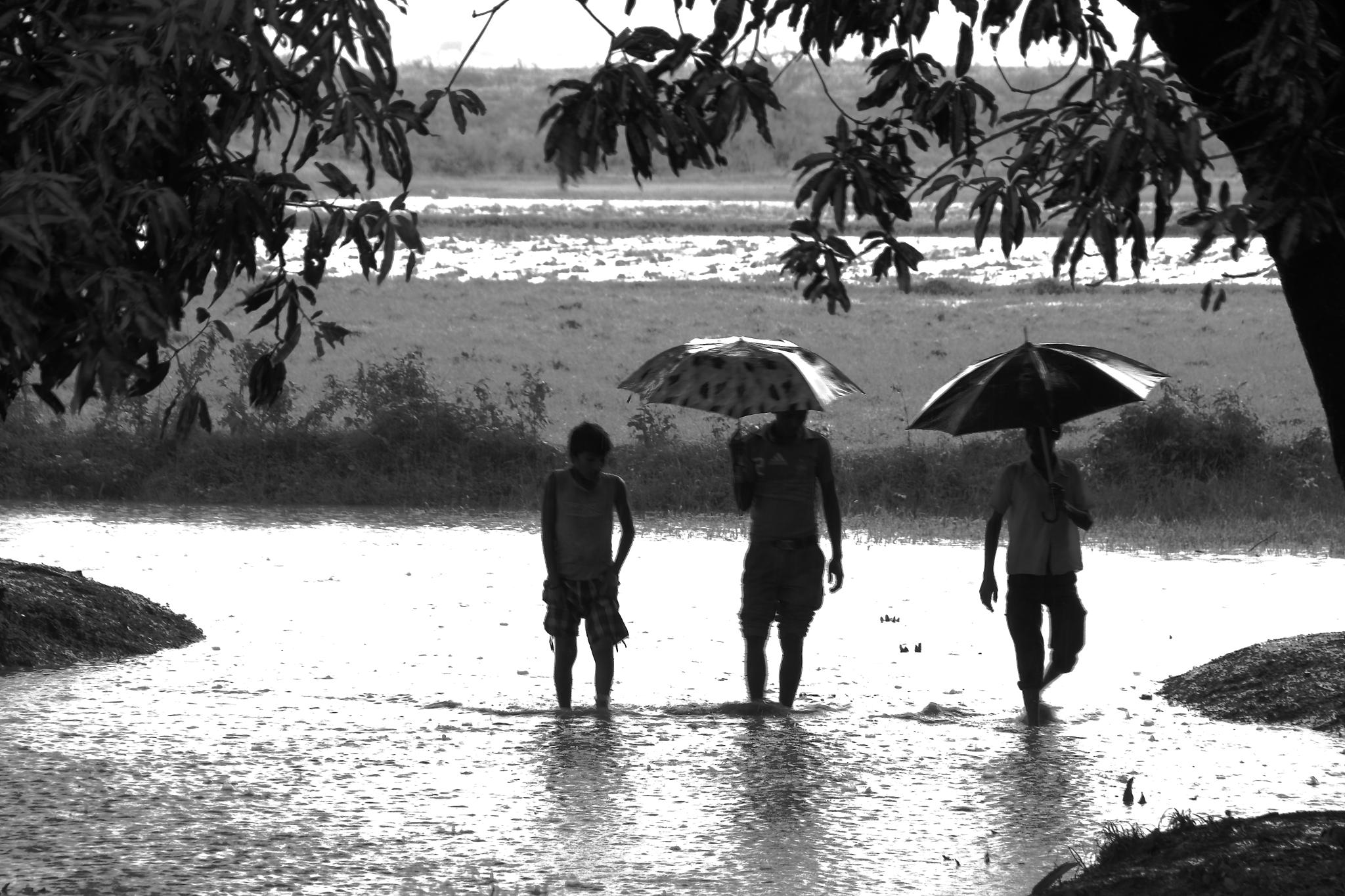 MONSOON by Jayant Mathur