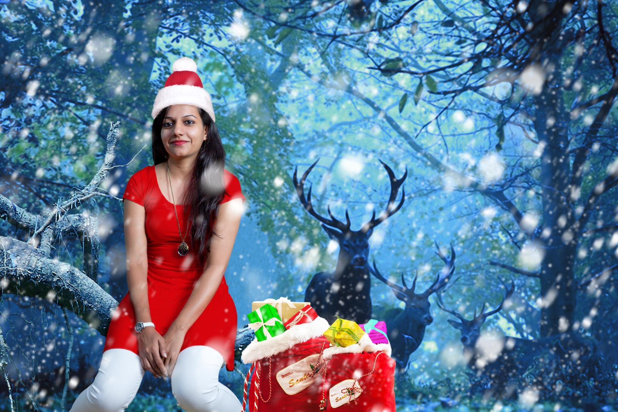 Season's Greetings - Merry Christmas and a Happy New Year to all My followers and Youpic Lovers :-) by Prem Swarup