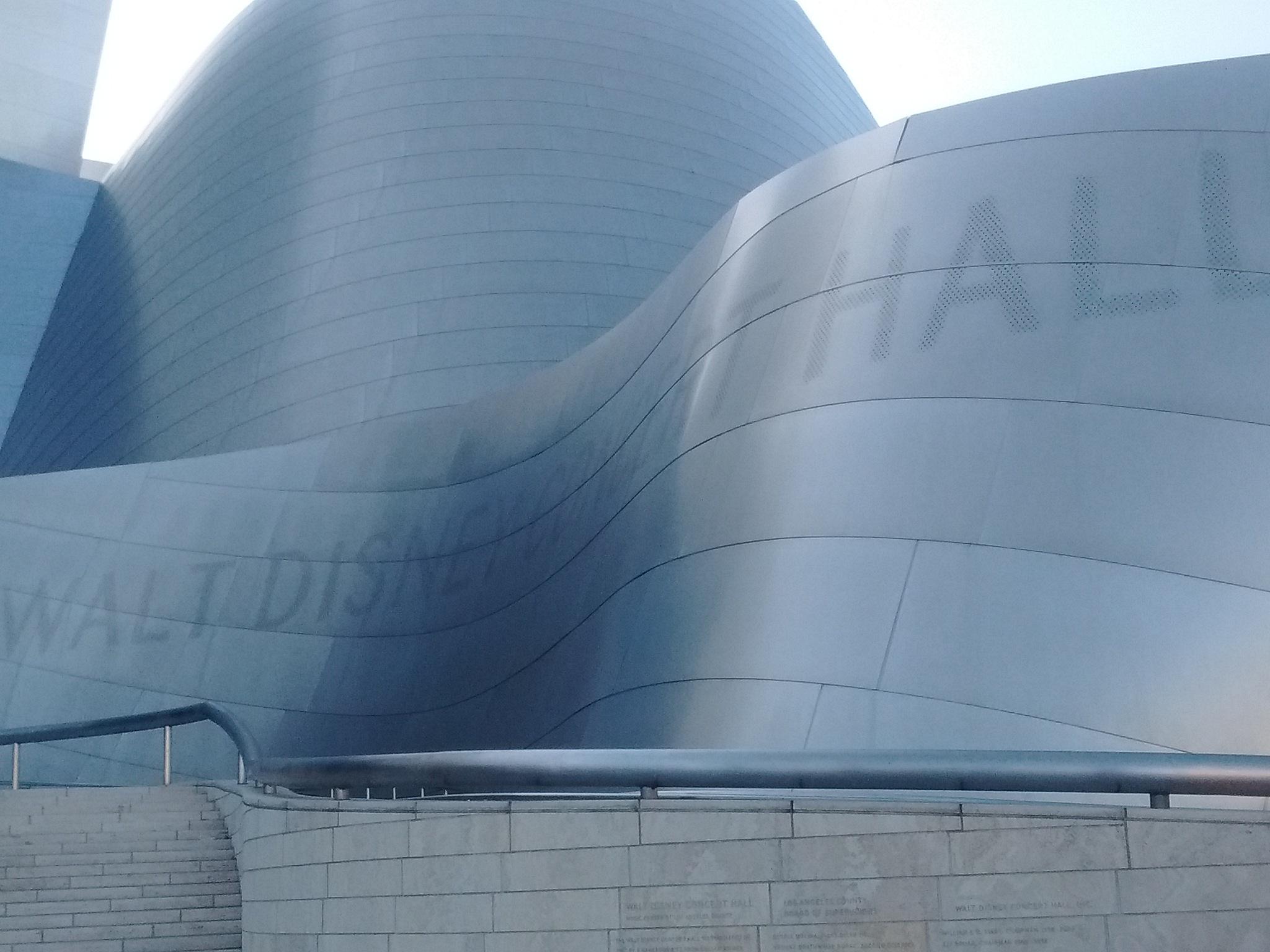 Walt Disney Concert Hall by Valerie Hall