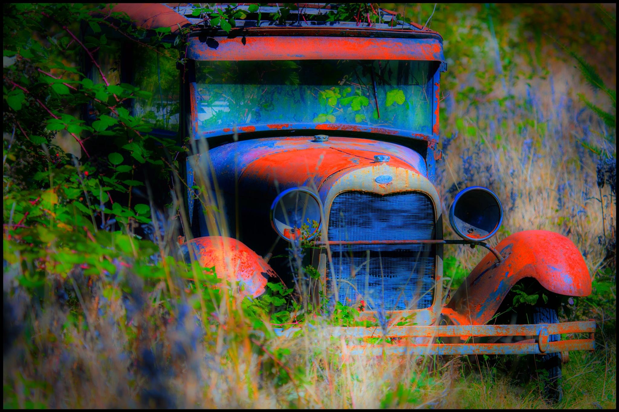Bramble Ford by Alwyn Kumst