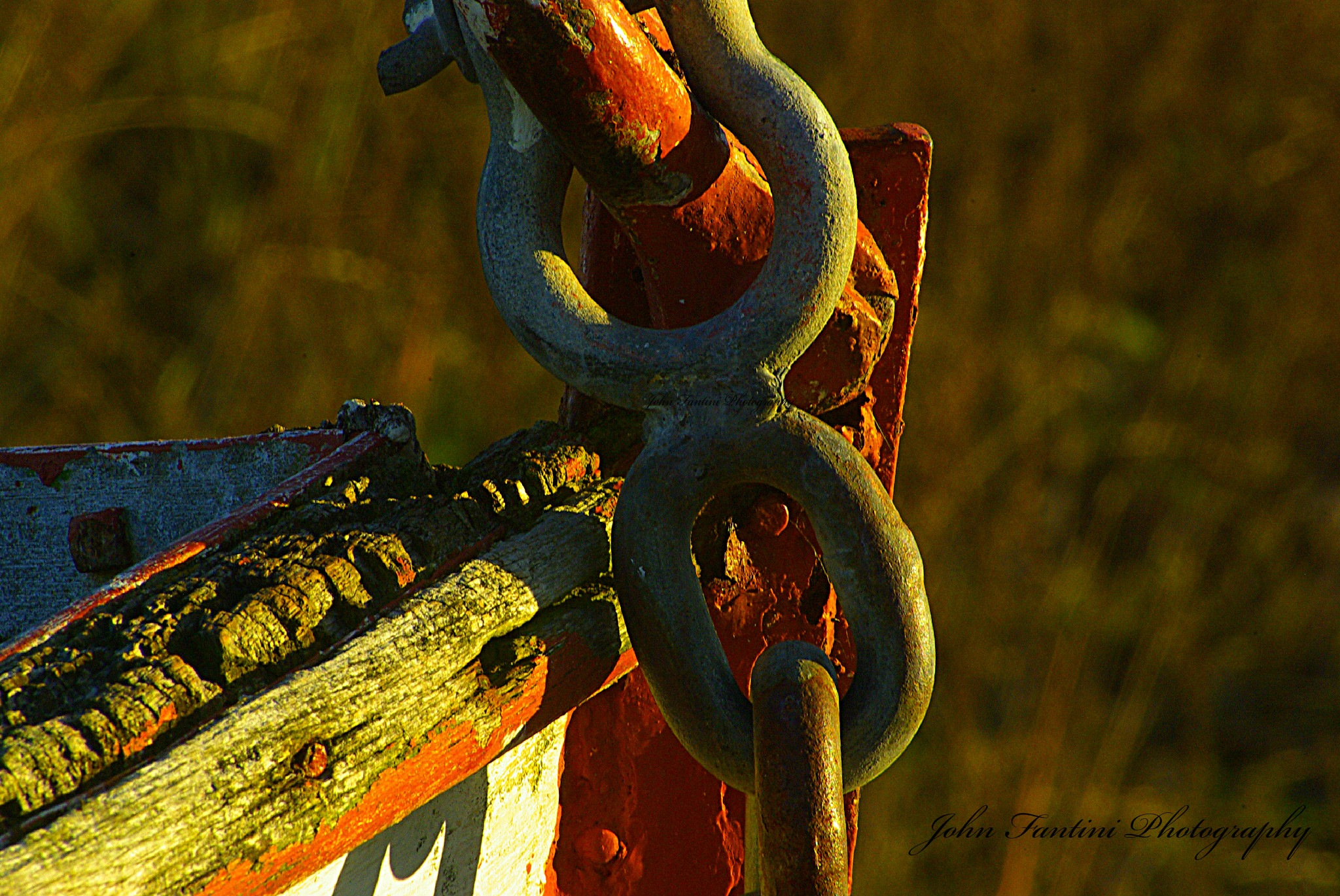 Chained by JohnFantiniPhotography
