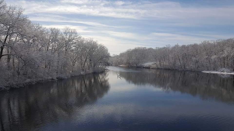 Winter Stillness by Laura R.