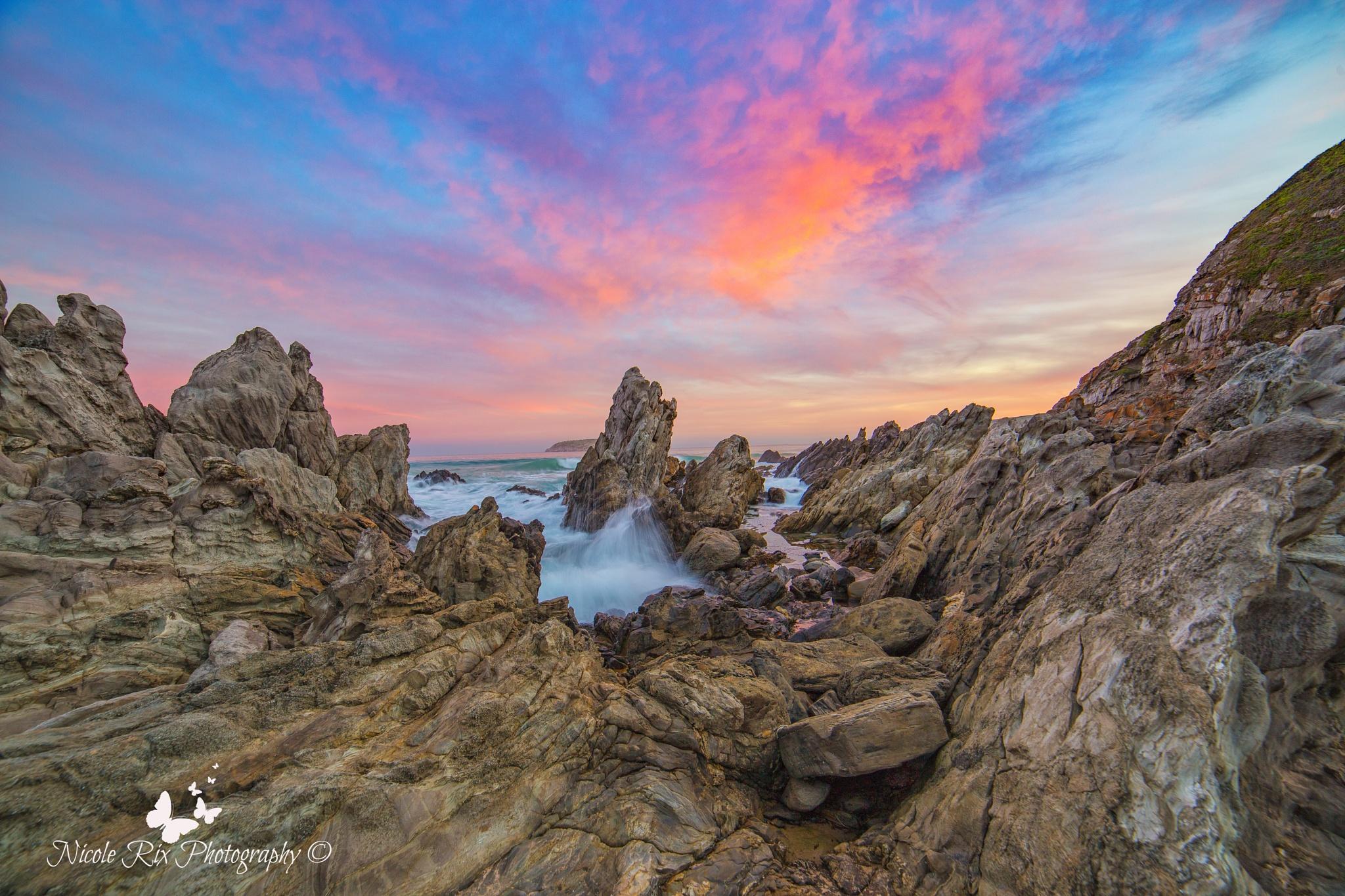 sunset by Nicole Rix