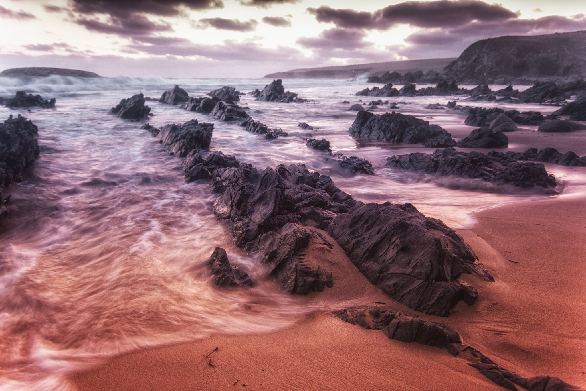 Deadly Cove by Nicole Rix