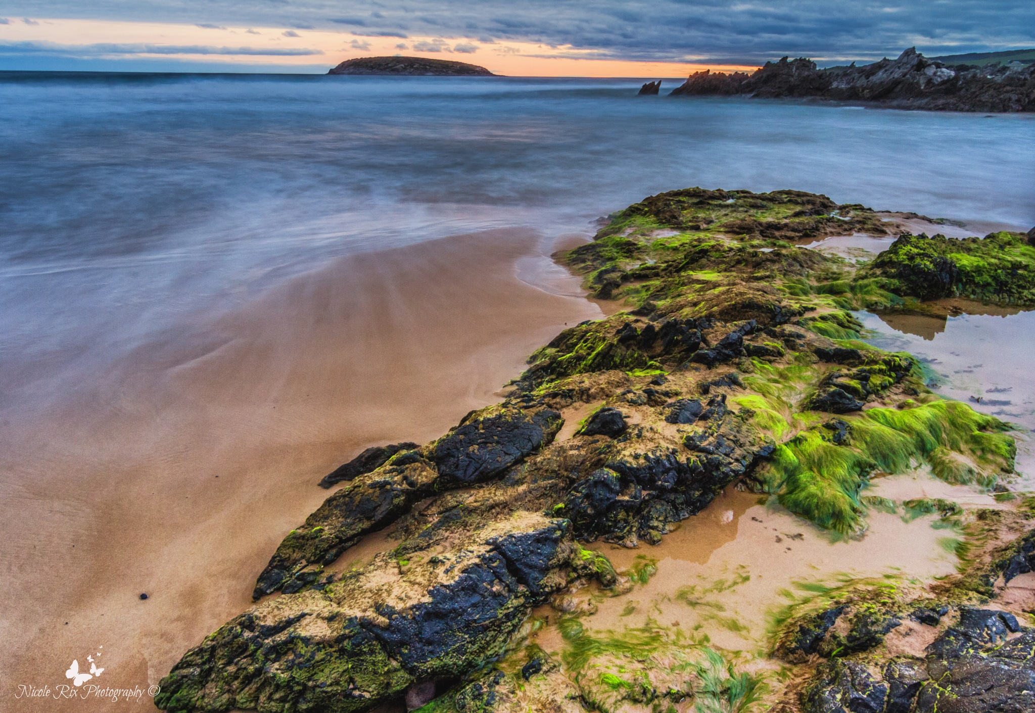 Moss rocks by Nicole Rix