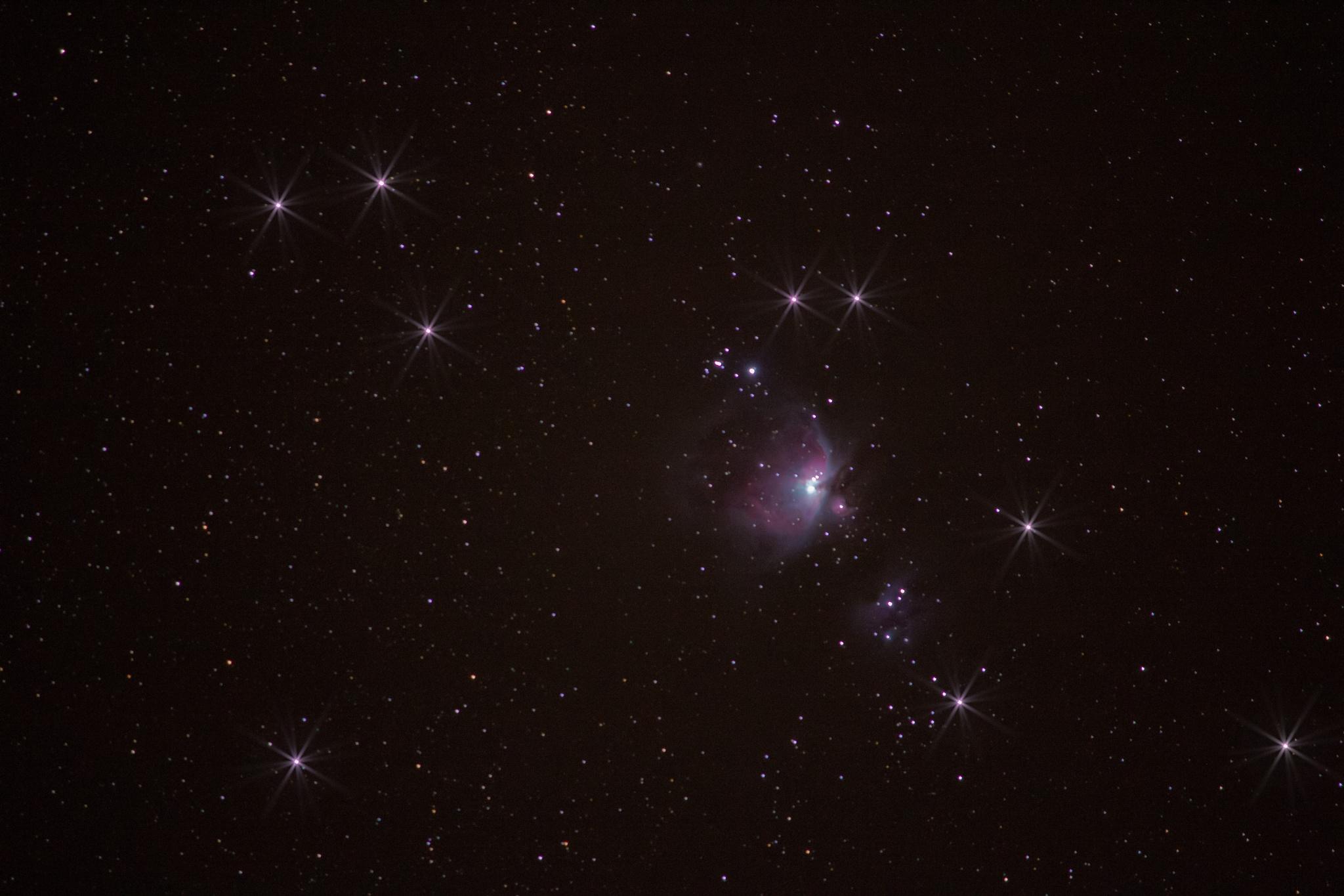 Nebula orion  by Nicole Rix