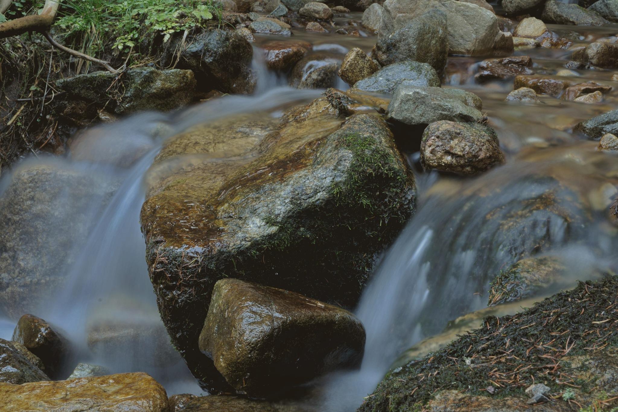 Mountain stream by Paweł