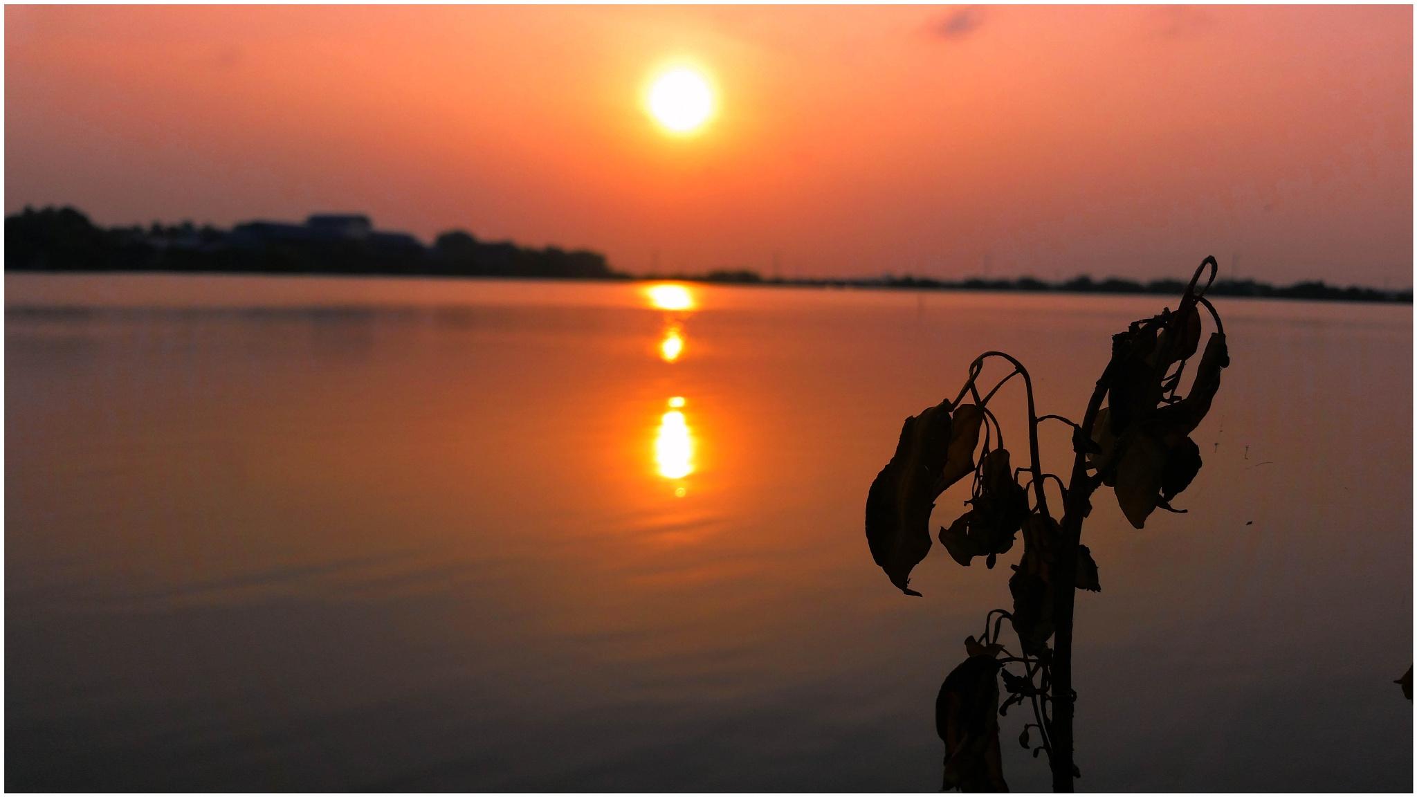 Sun set by Jasitharan