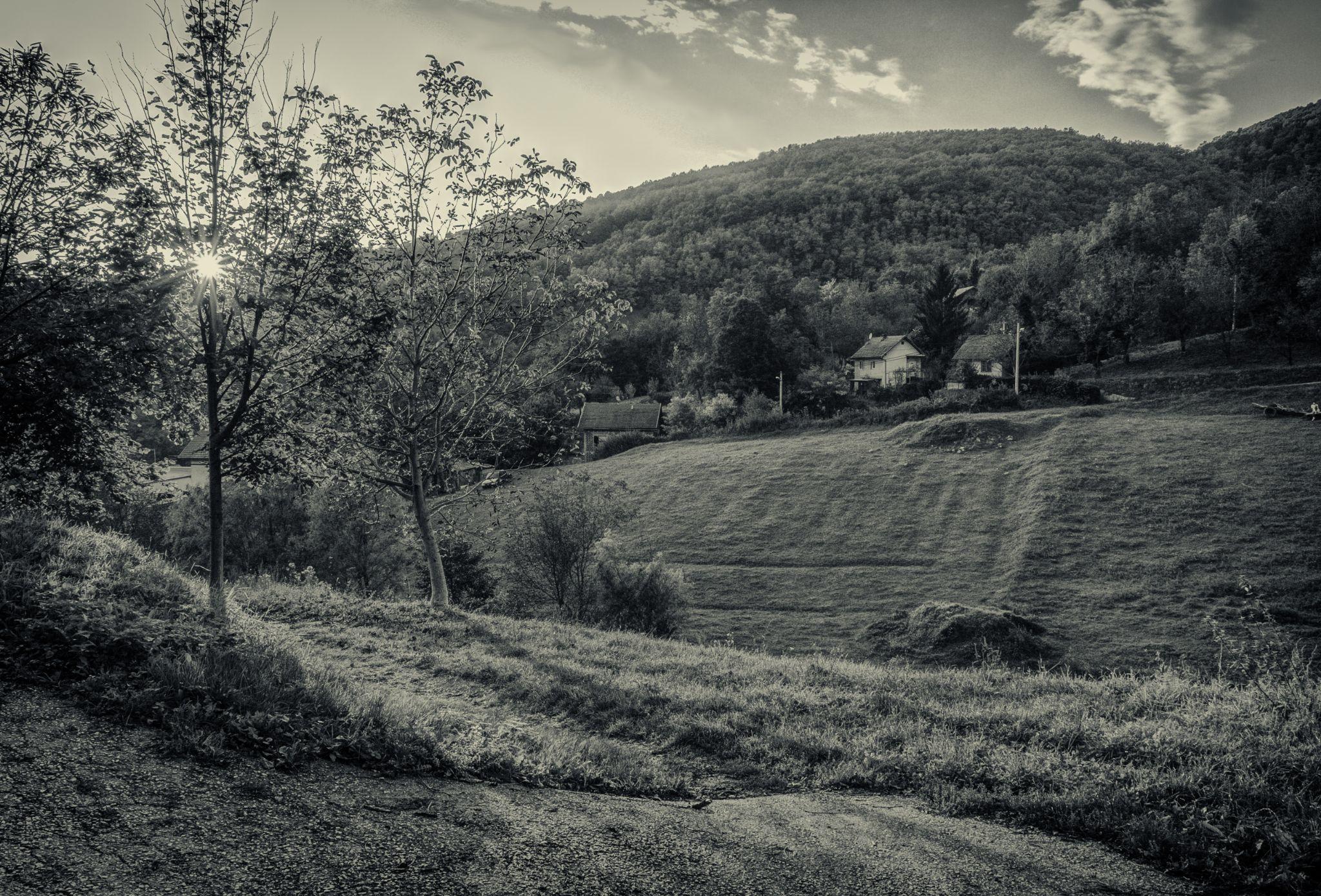 On the hill by Zoran Radakovic