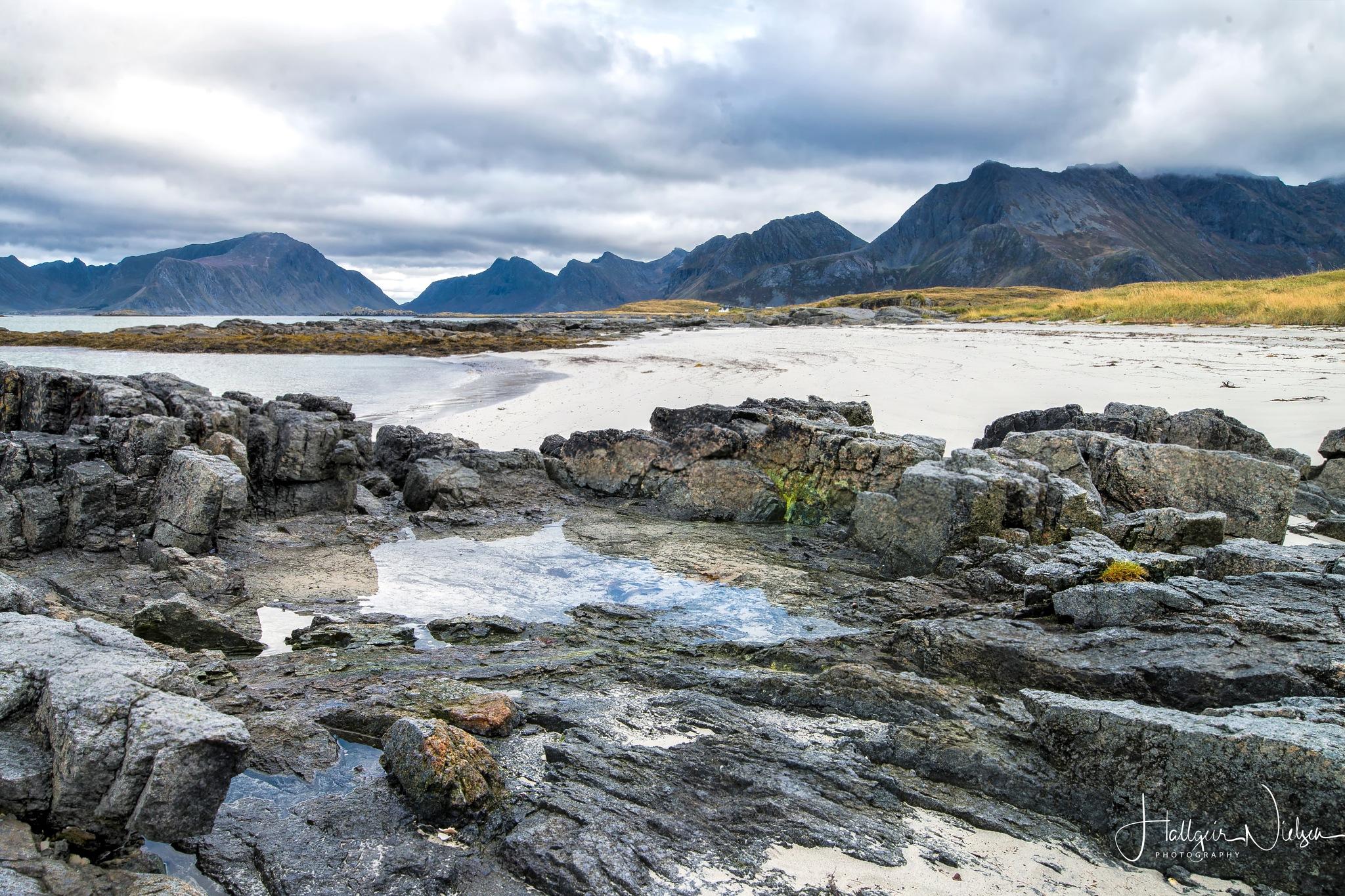 Lofoten Beaches by Hallgeir Nielsen