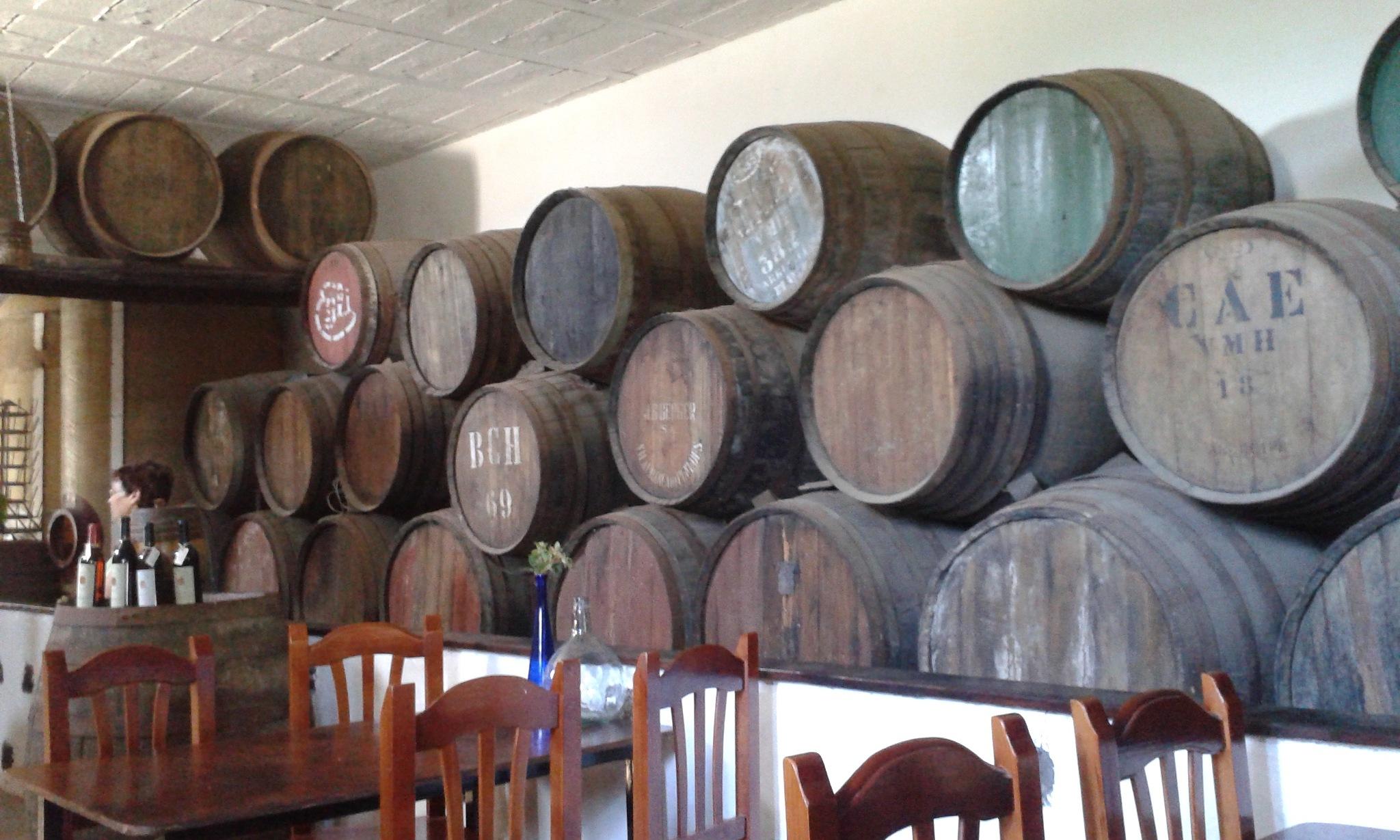 Inside a bodega (wine cellar) by Launa