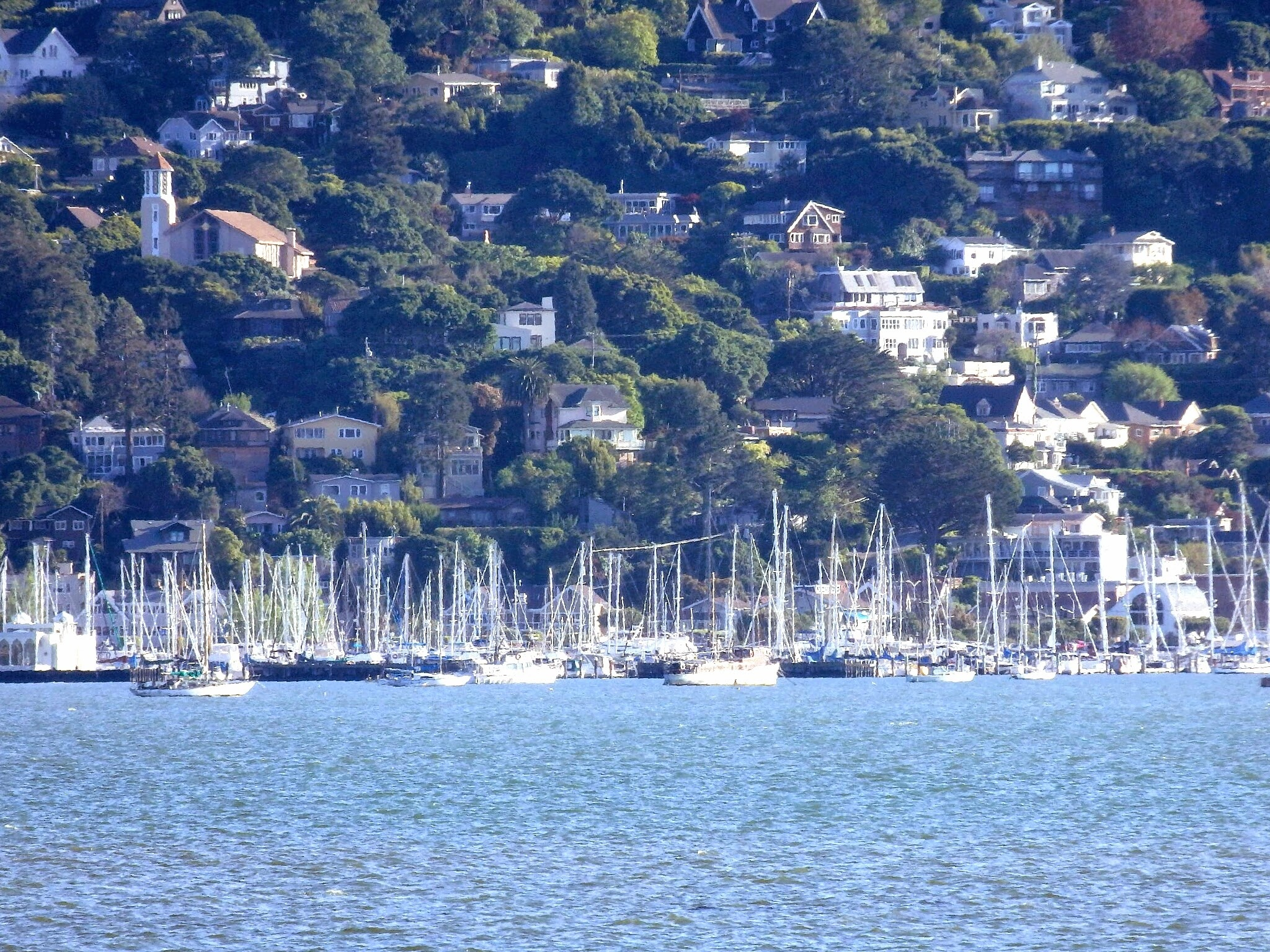 The Sausalito, CA harbor, taken from Tiburon, CA.  by Victoria JD