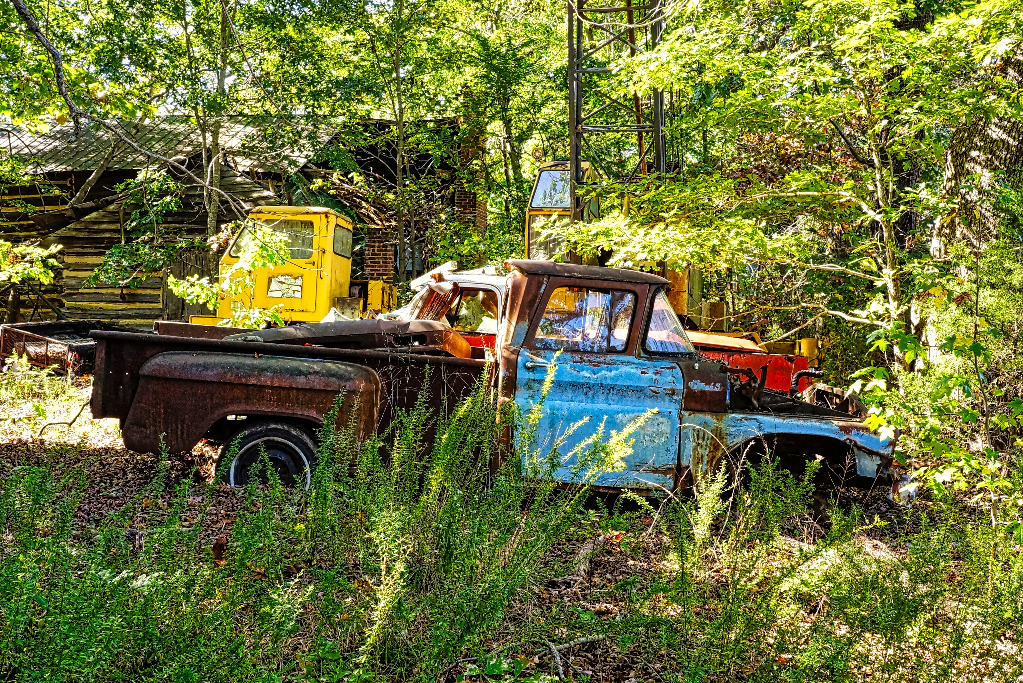 Chevy Pickups In The Woods by Harrison Hanville