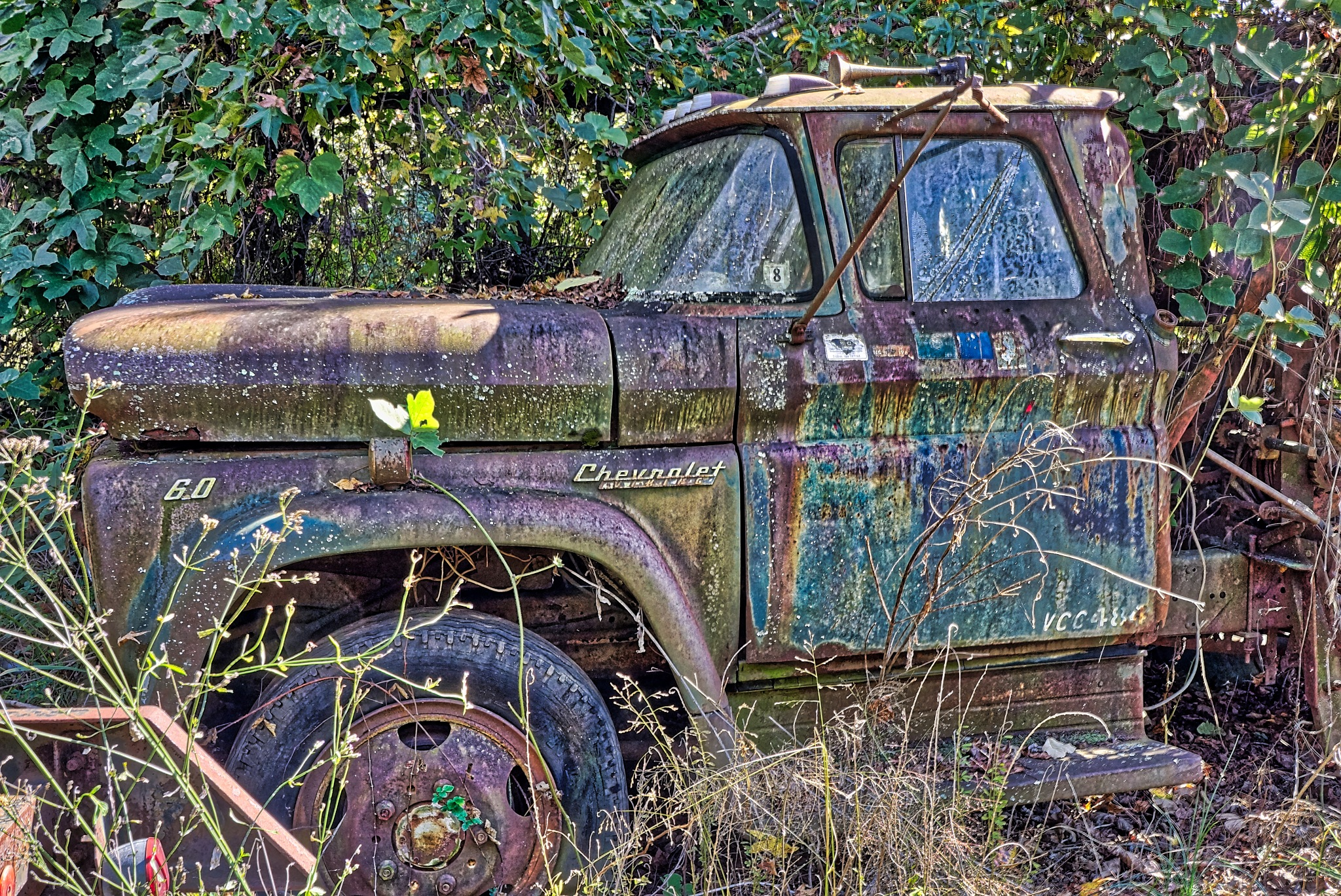 Rusting In The Weeds by Harrison Hanville