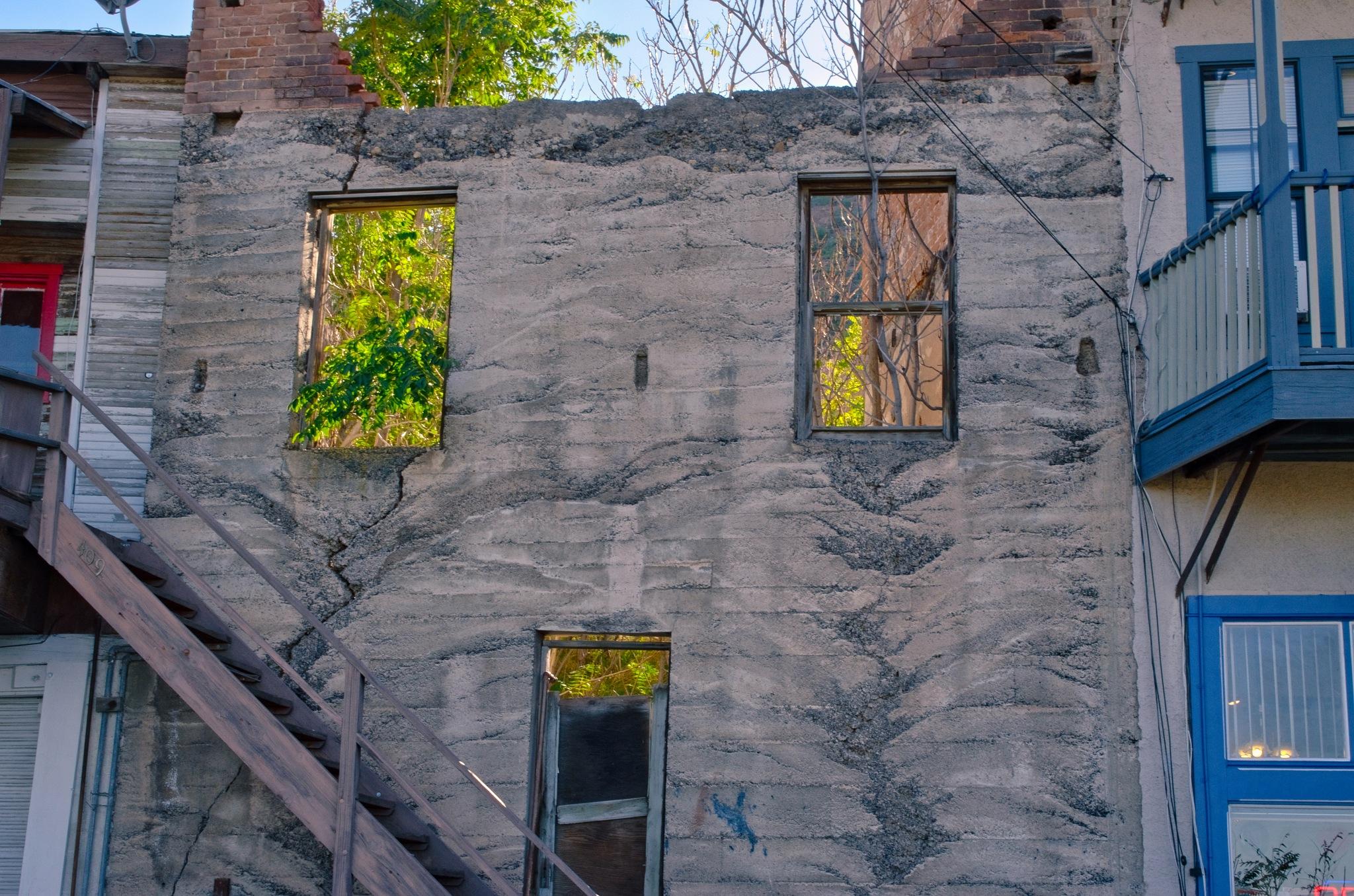 Open Windows by Harrison Hanville