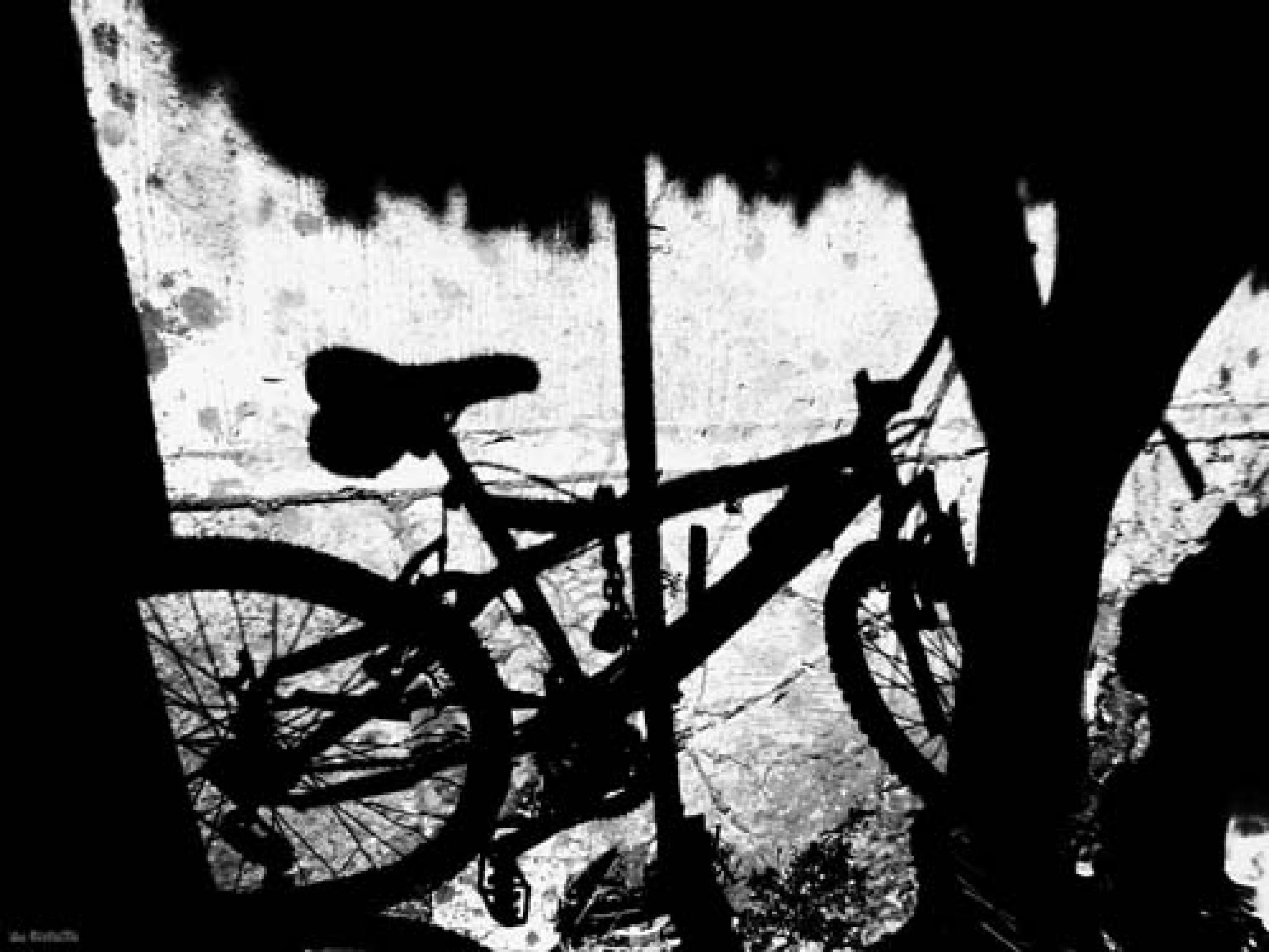 bicycle by f5.6 artstreet
