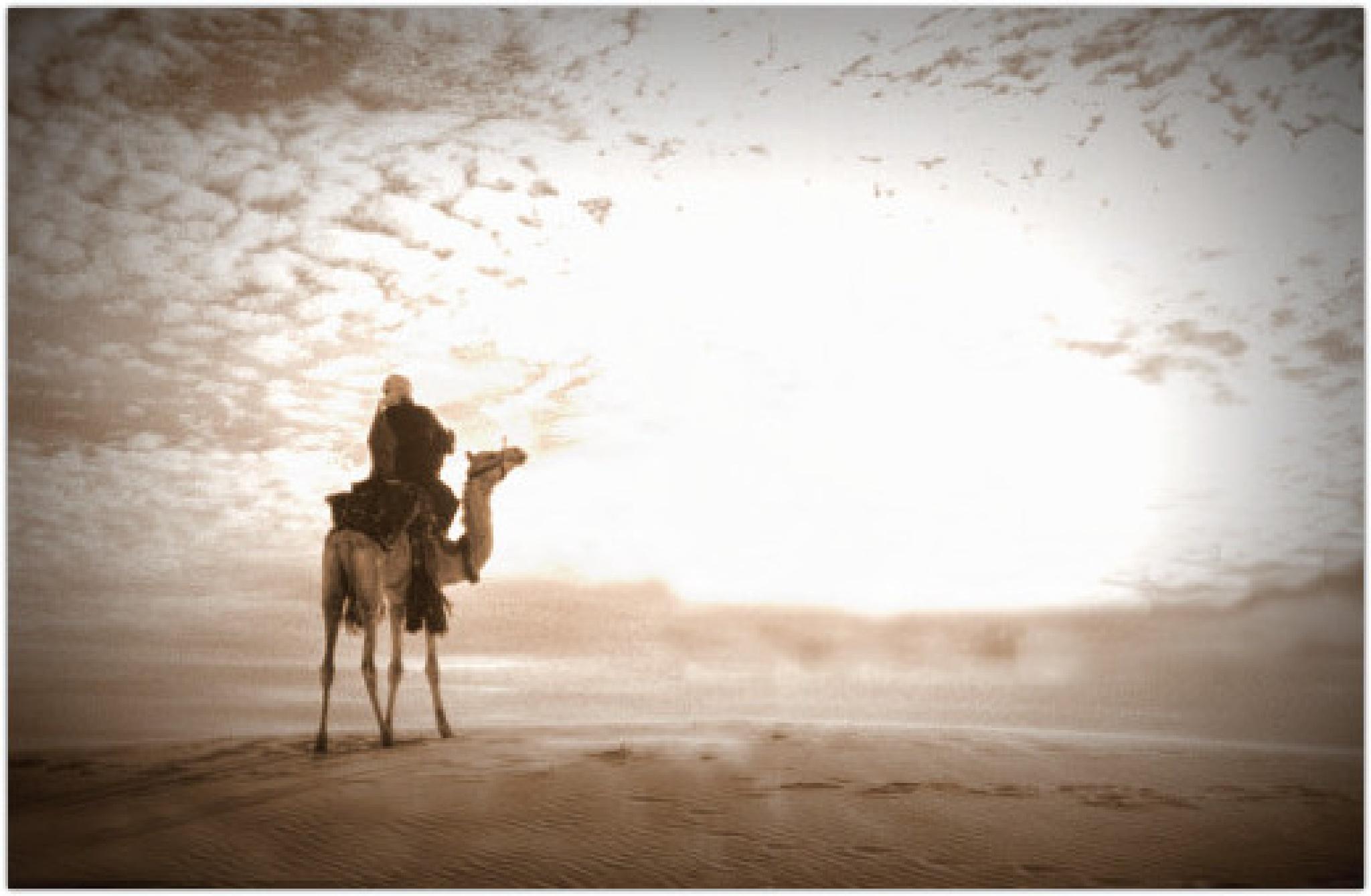 Alone in the Light. by Samir Sami