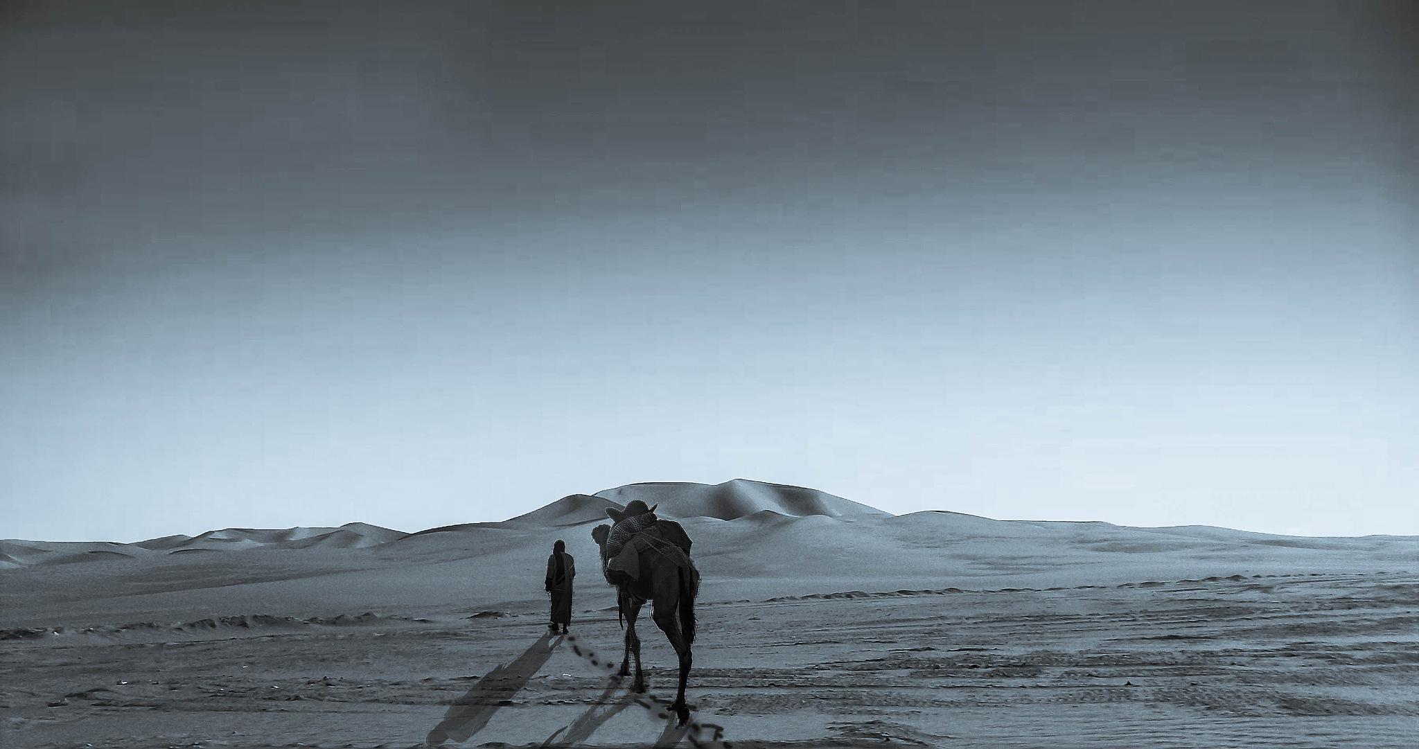 Walking in life. by Samir Sami
