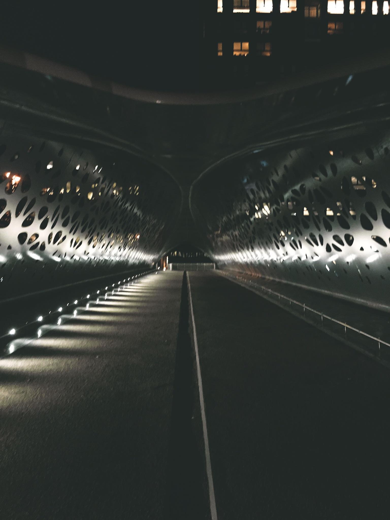 Night Walk by IvonaPriest