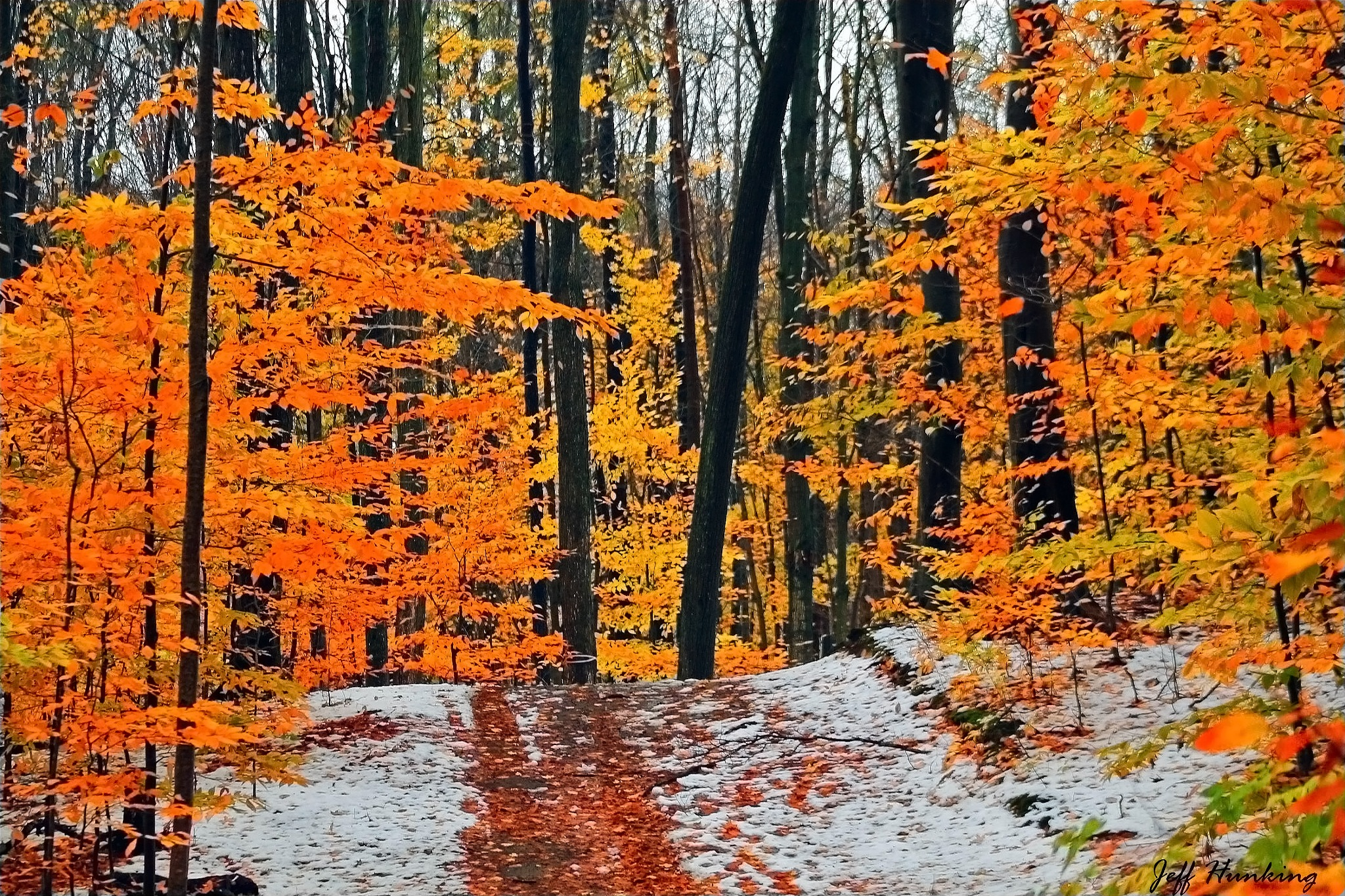 Winter in the fall. by itsjustmynature