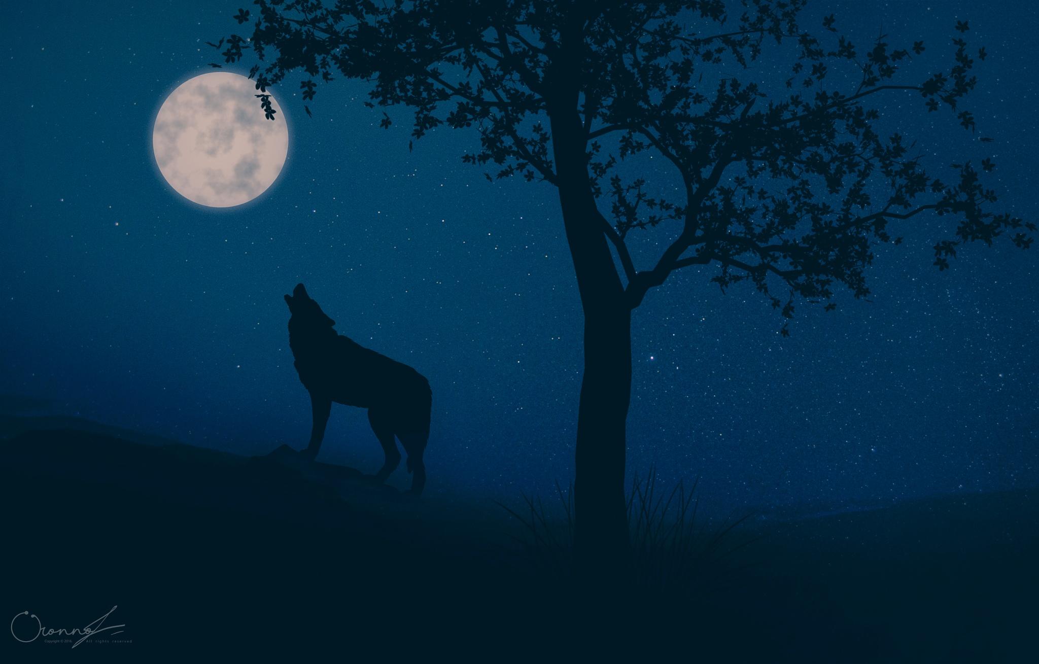 werewolf . by Oronno Shahriar