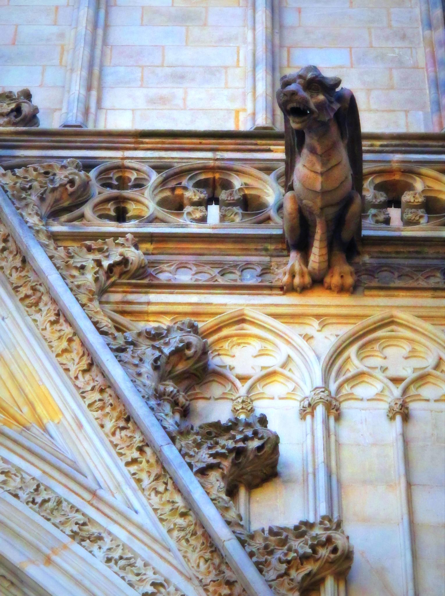 catedral de barcelona by angelgarcia
