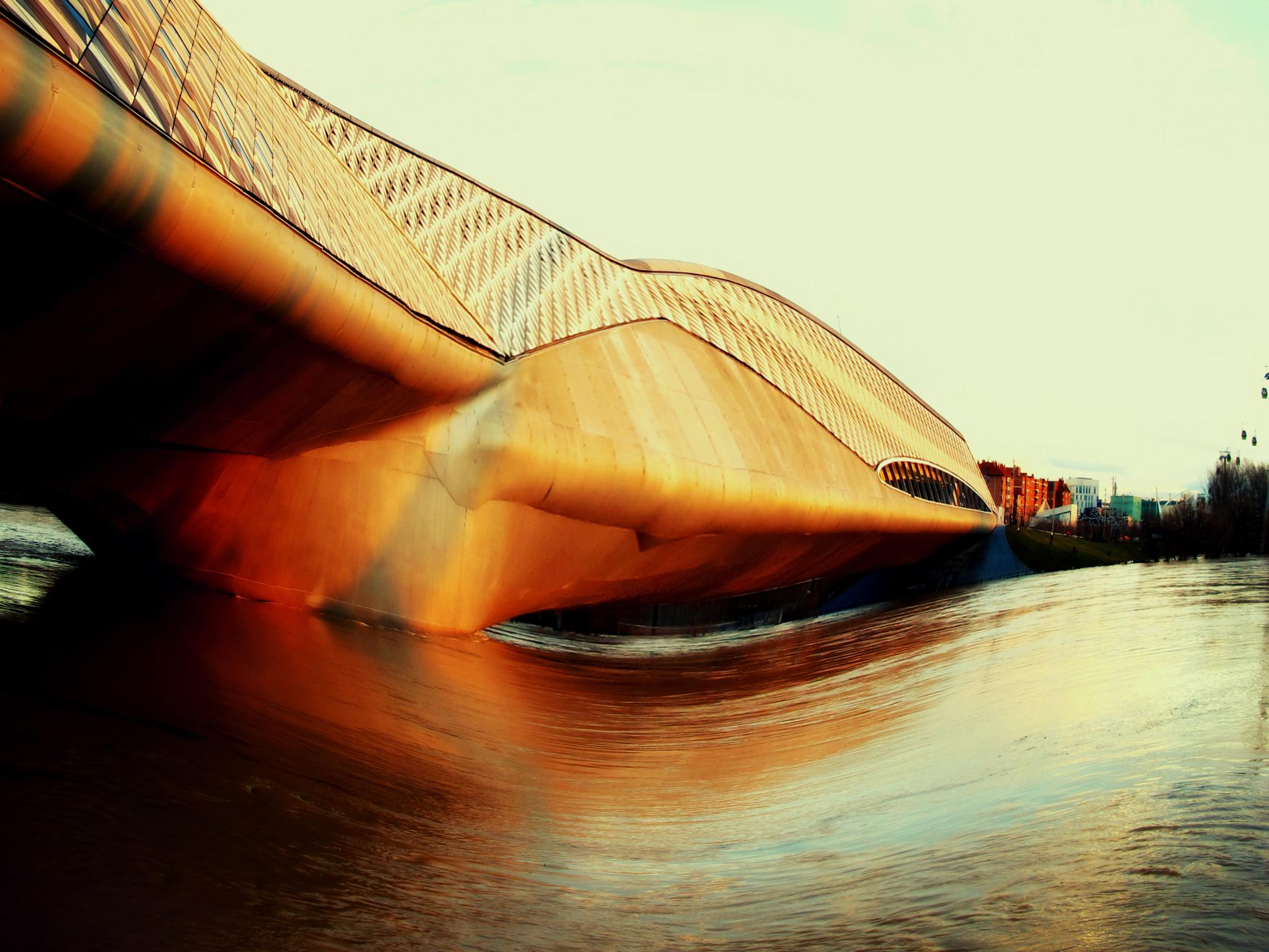 puentes de zaragoza by angelgarcia