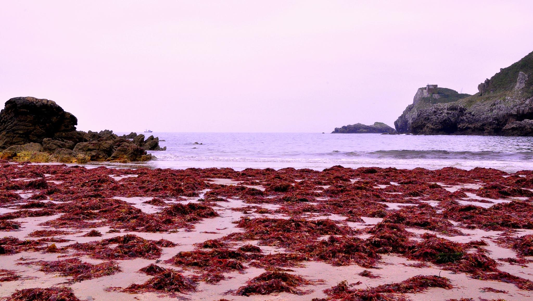 playas de asturias by angelgarcia