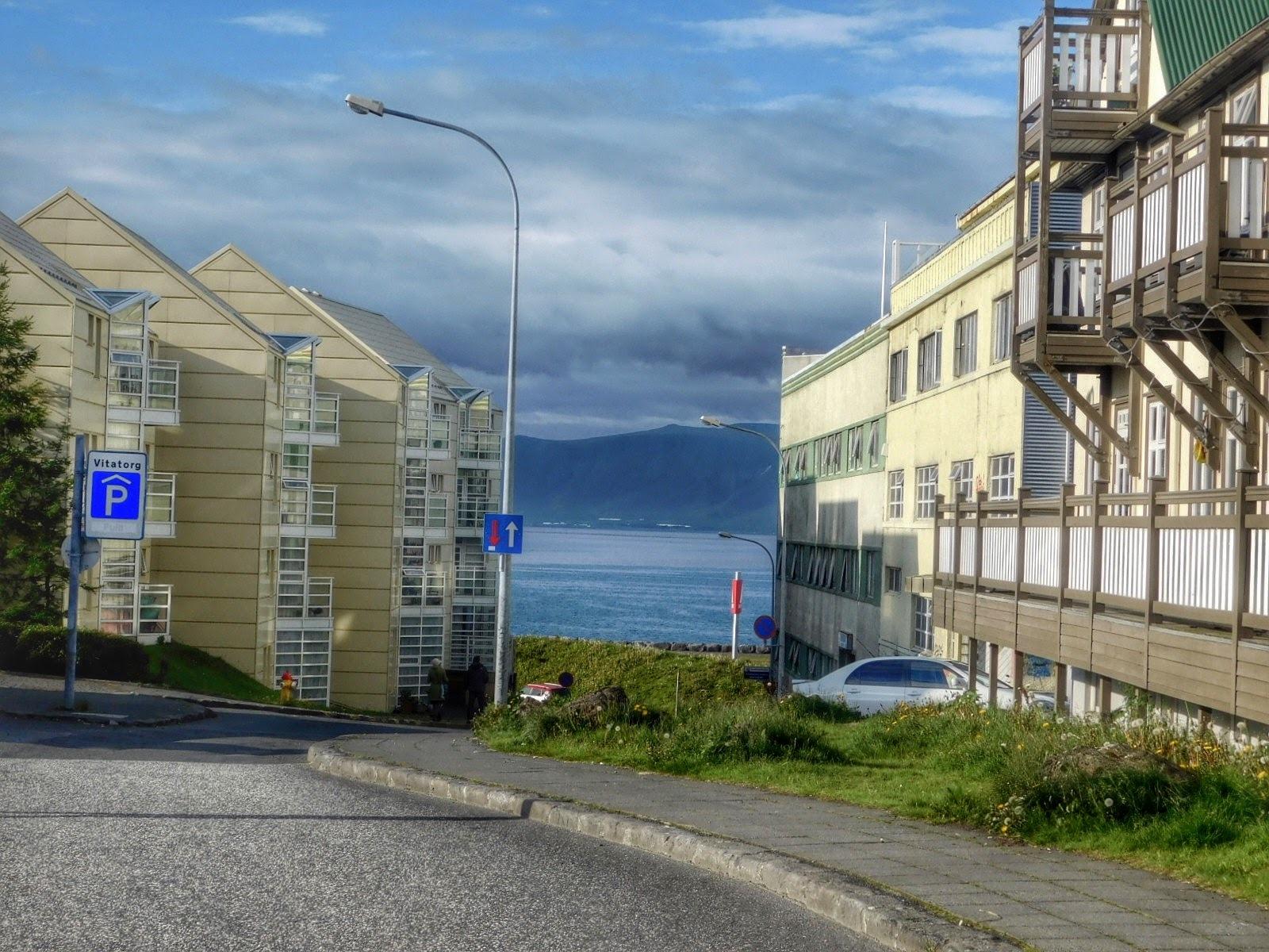 Reykjavik Iceland  by Sheila Button