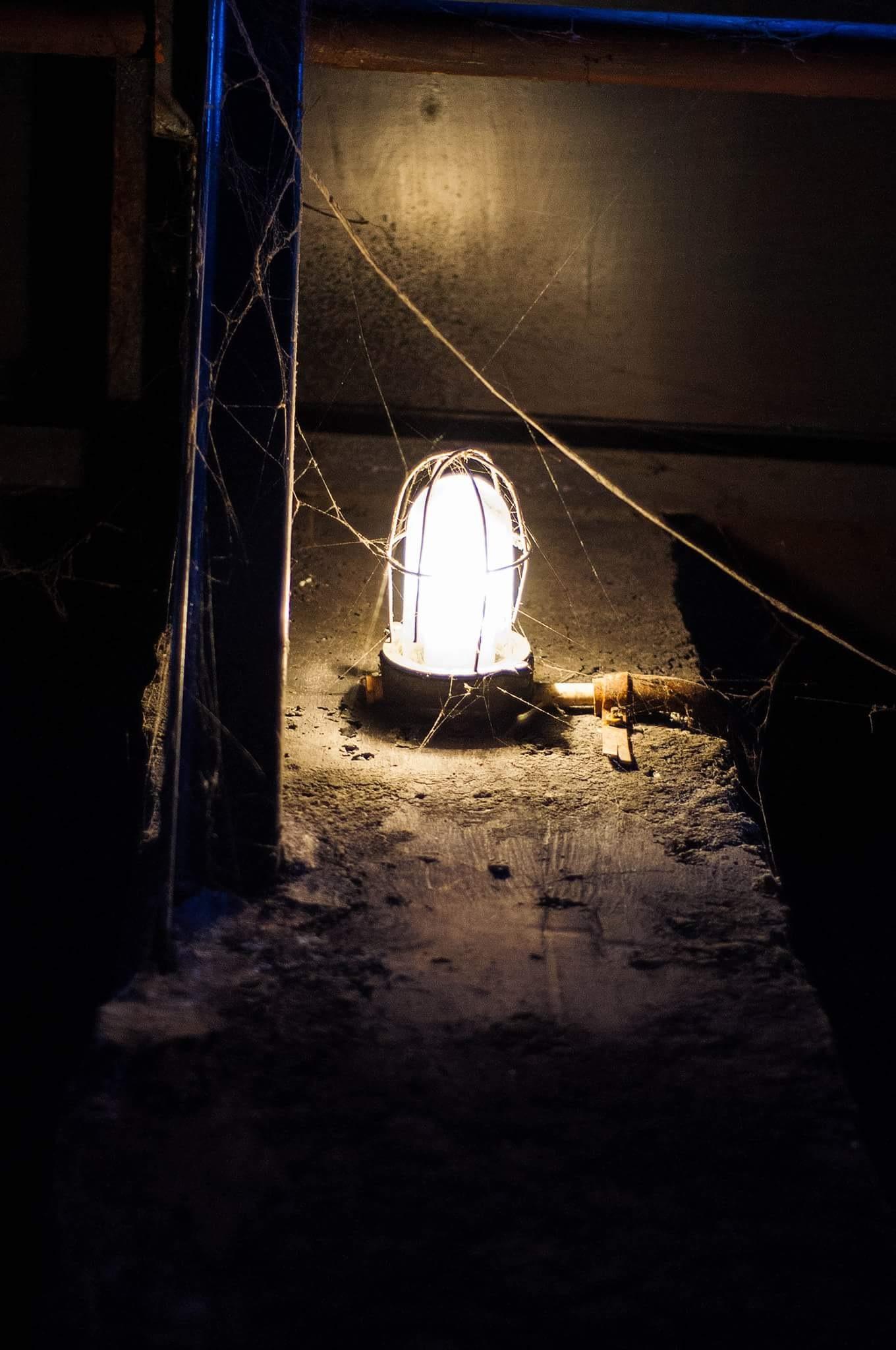 light.. by Alexandru Firu