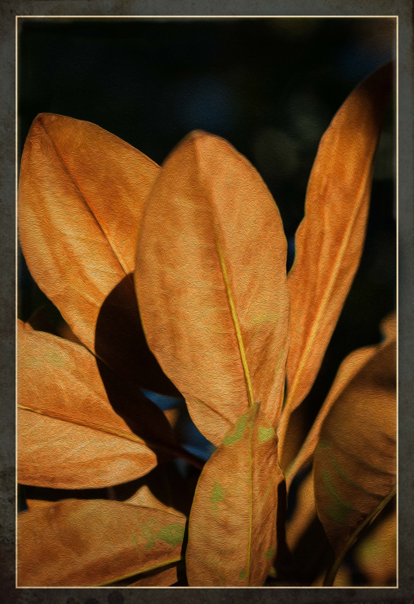 Golden Leaves by Bronwynne Kidson