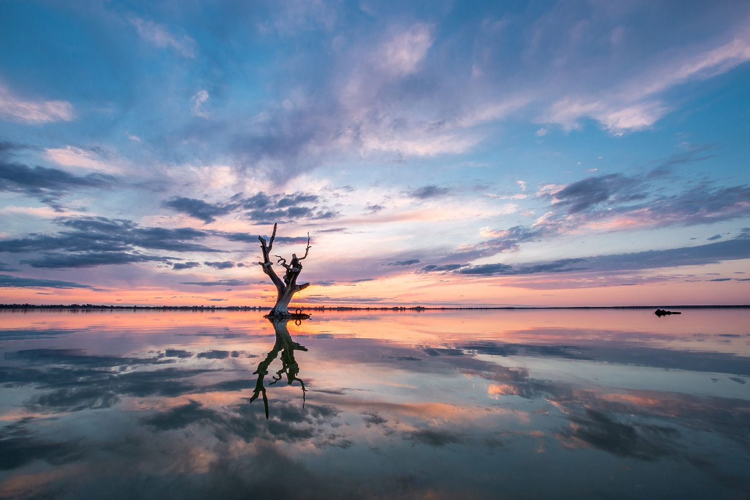 Reflection Perfection by Kirsty Morrell