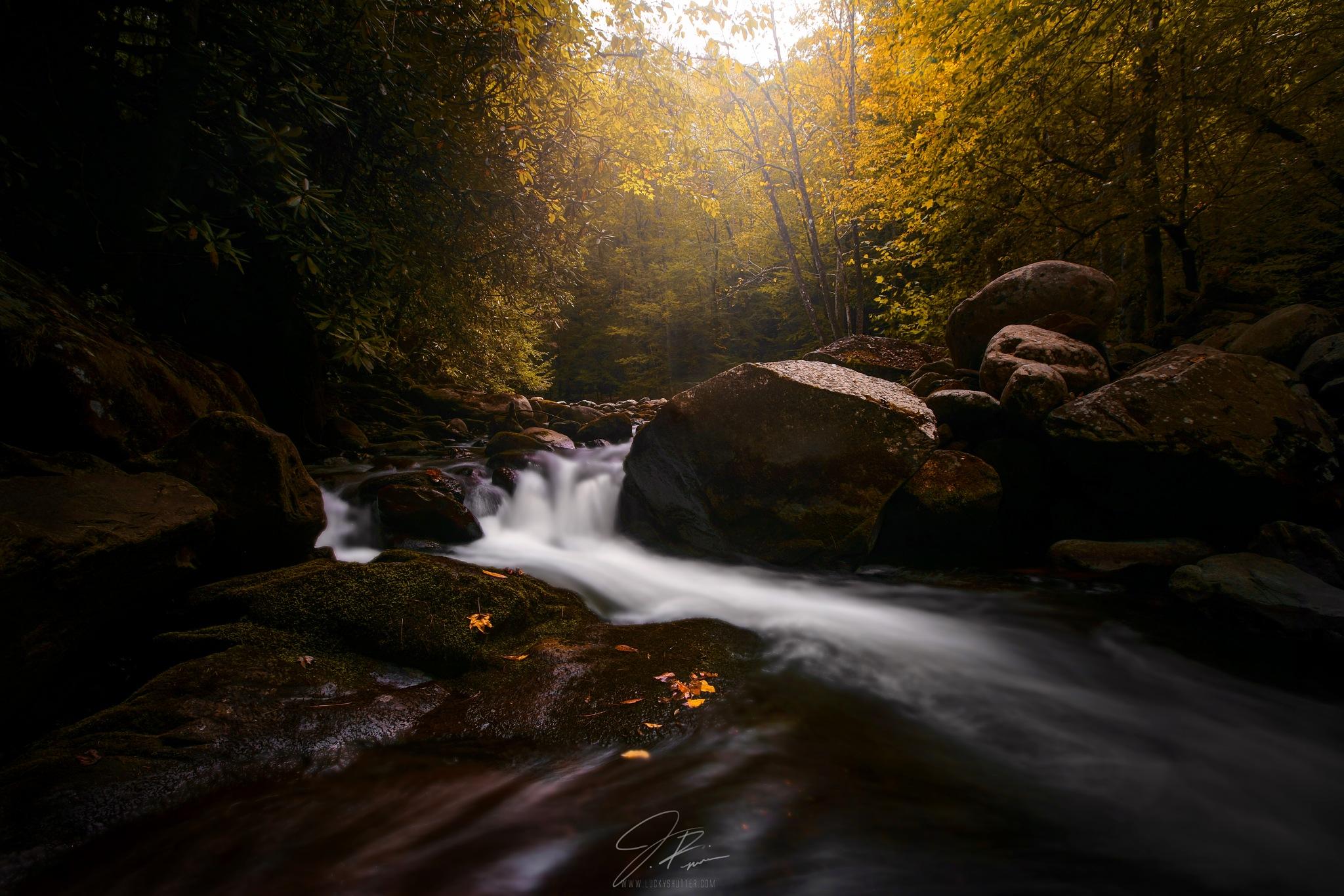 Smoky Mountain Days by Jesse R. Moran