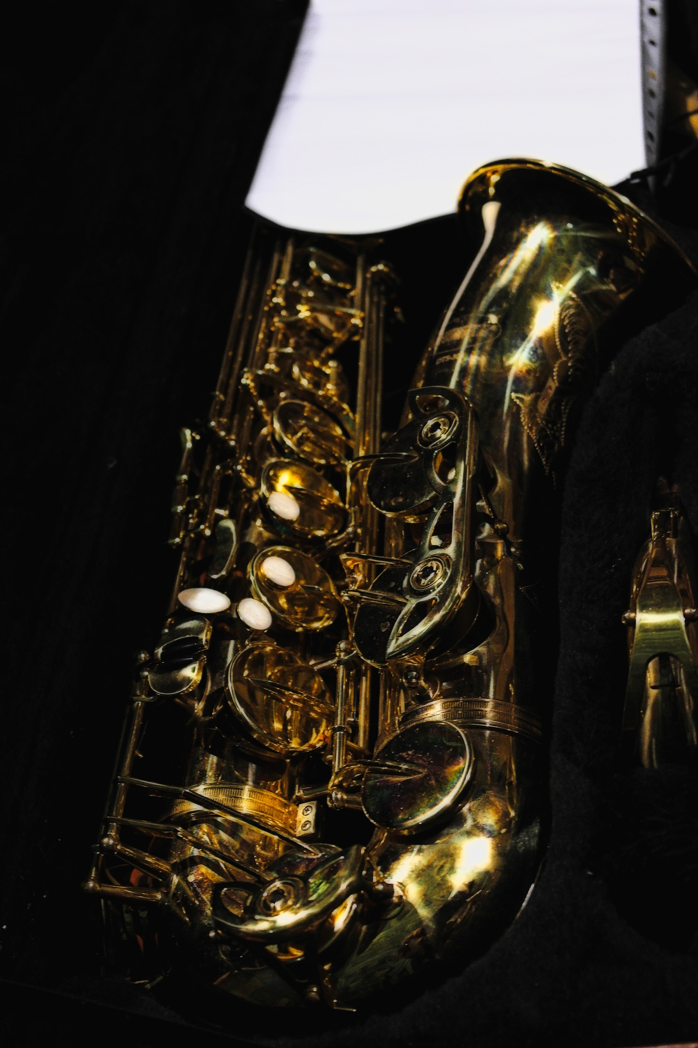 The saxofone by Antonello Putignani